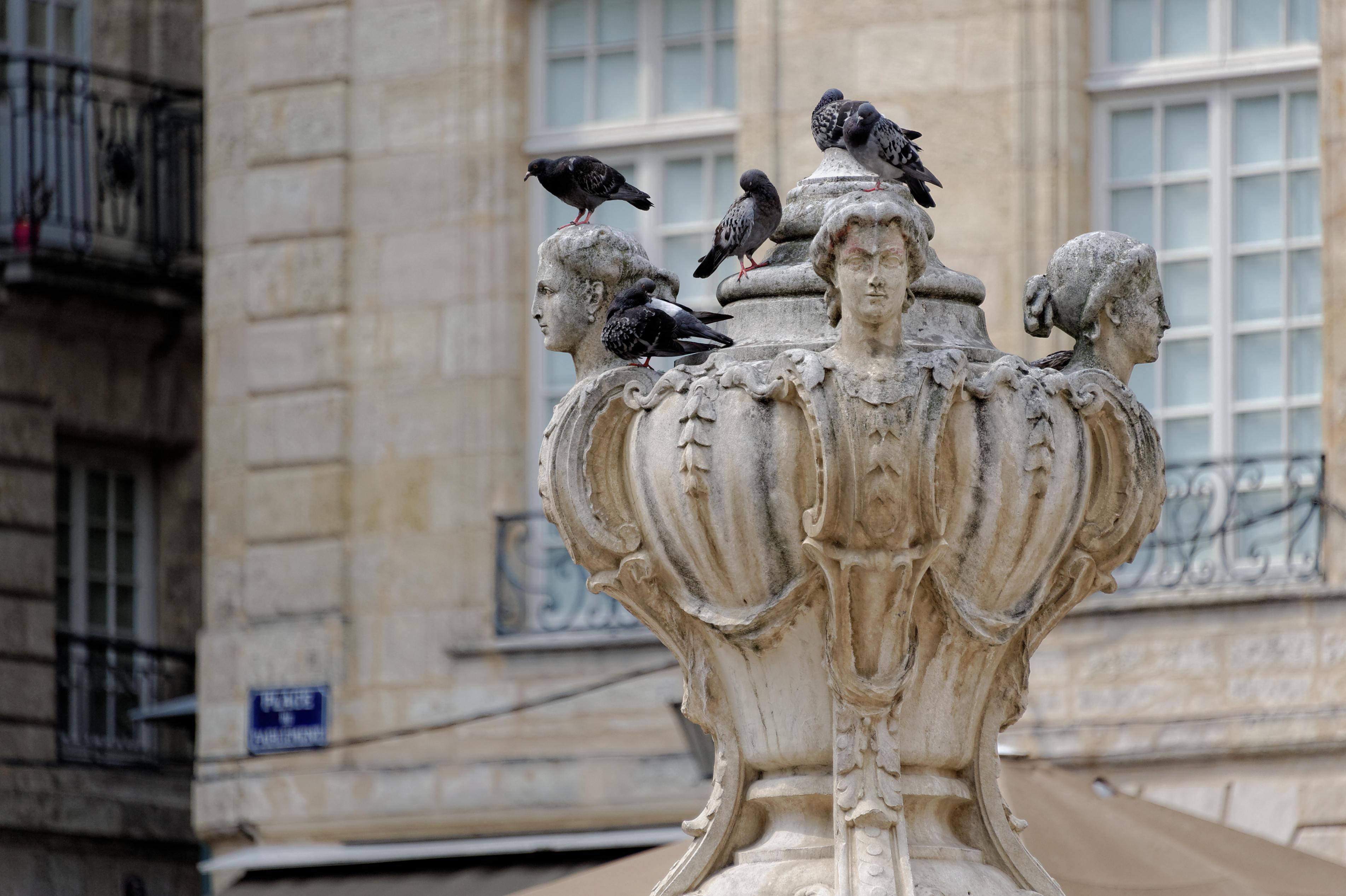 7764_Bordeaux - Place du parlement