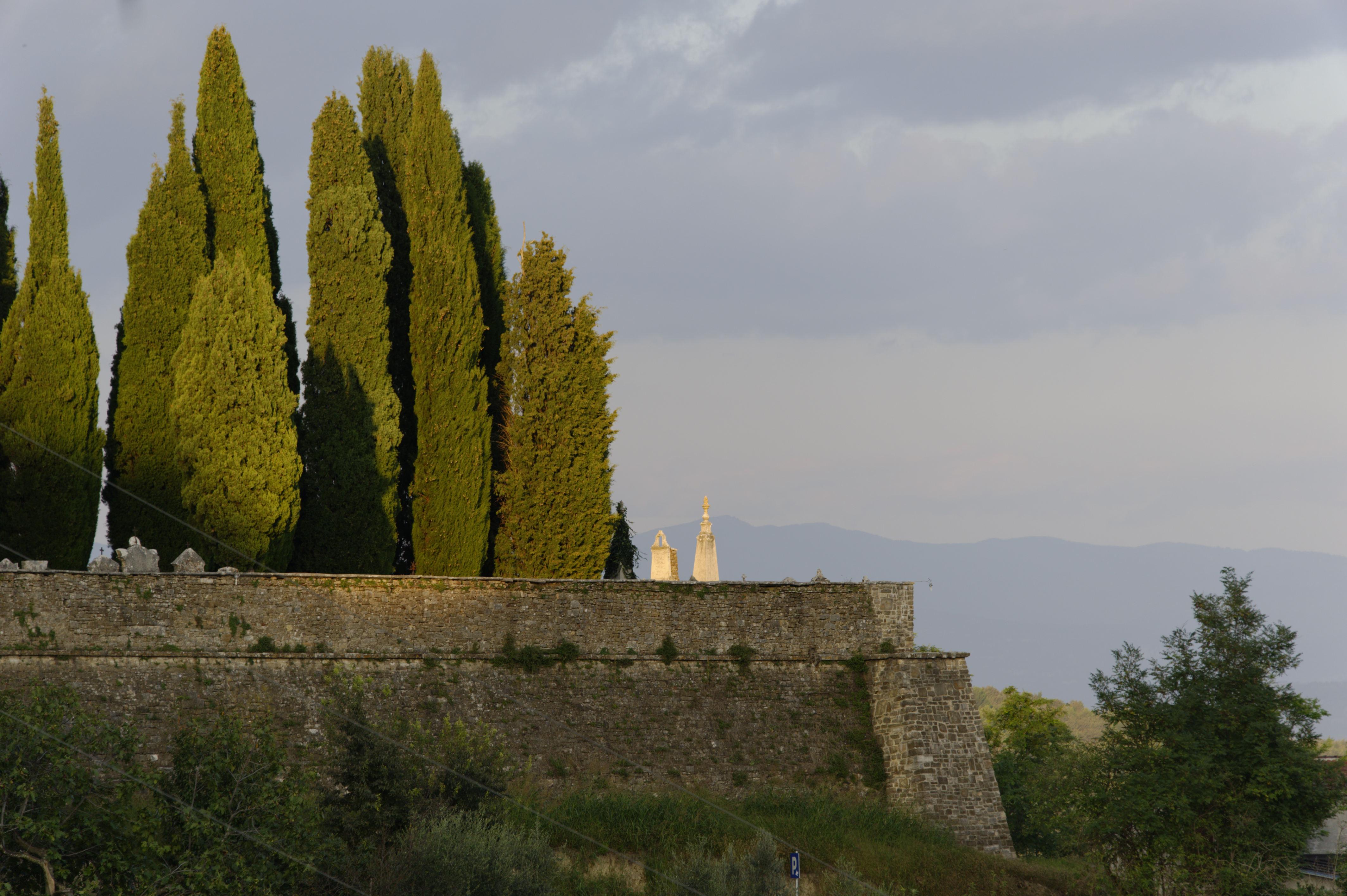 8881-Motovun (Istrie)