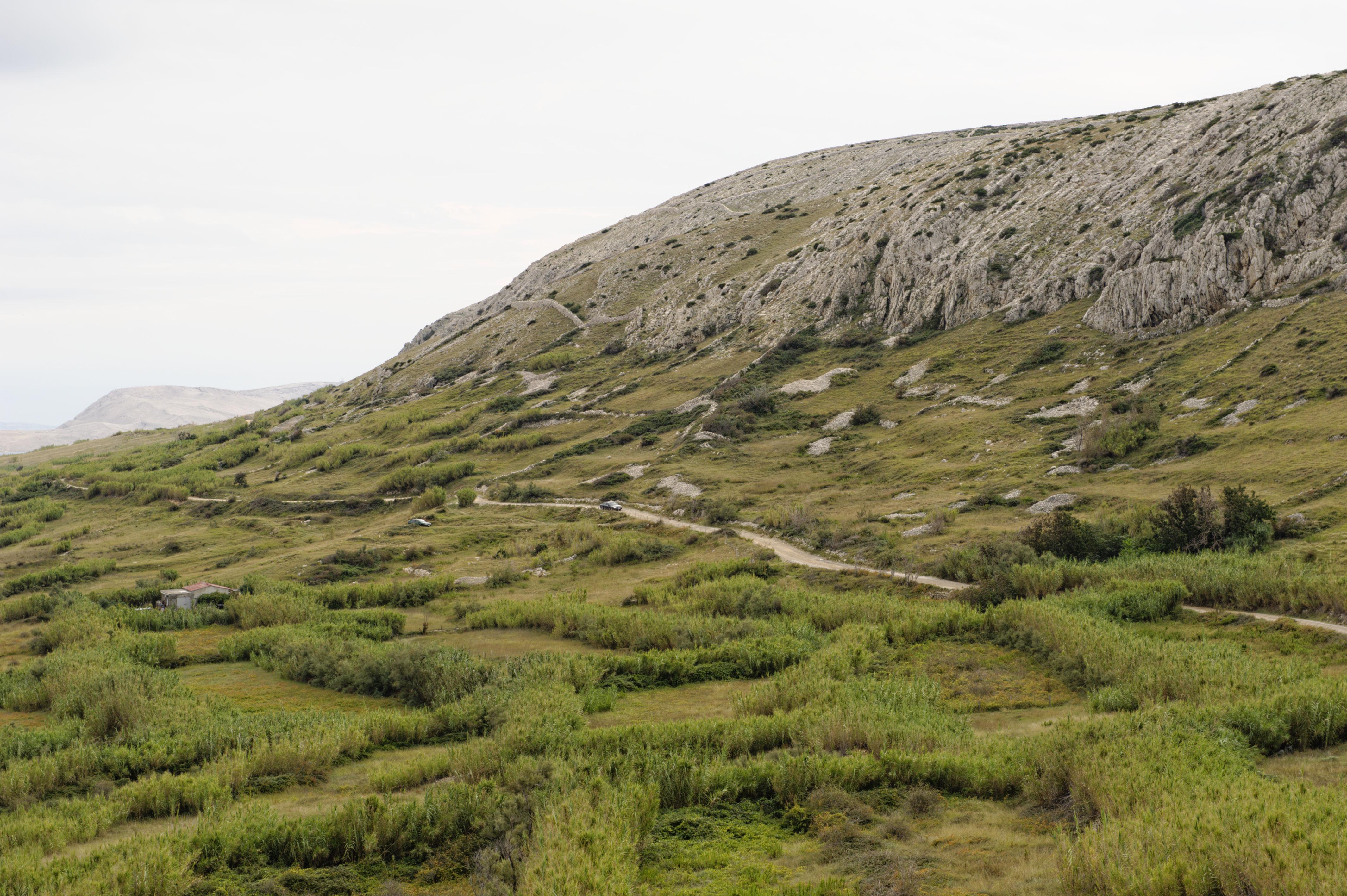 9295-Ile de Pag (Nord Dalmatie)