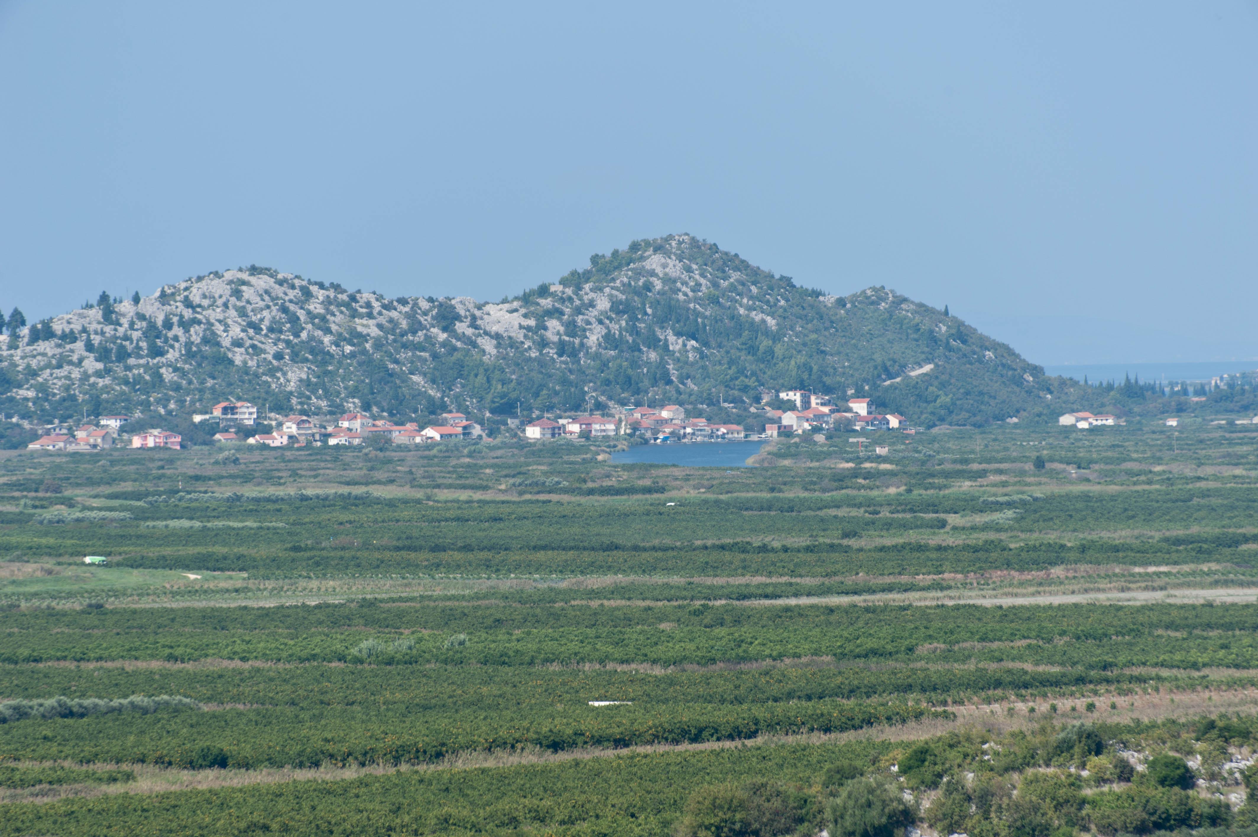 0284-Delta de la Neretva (Sud Dalmatie)