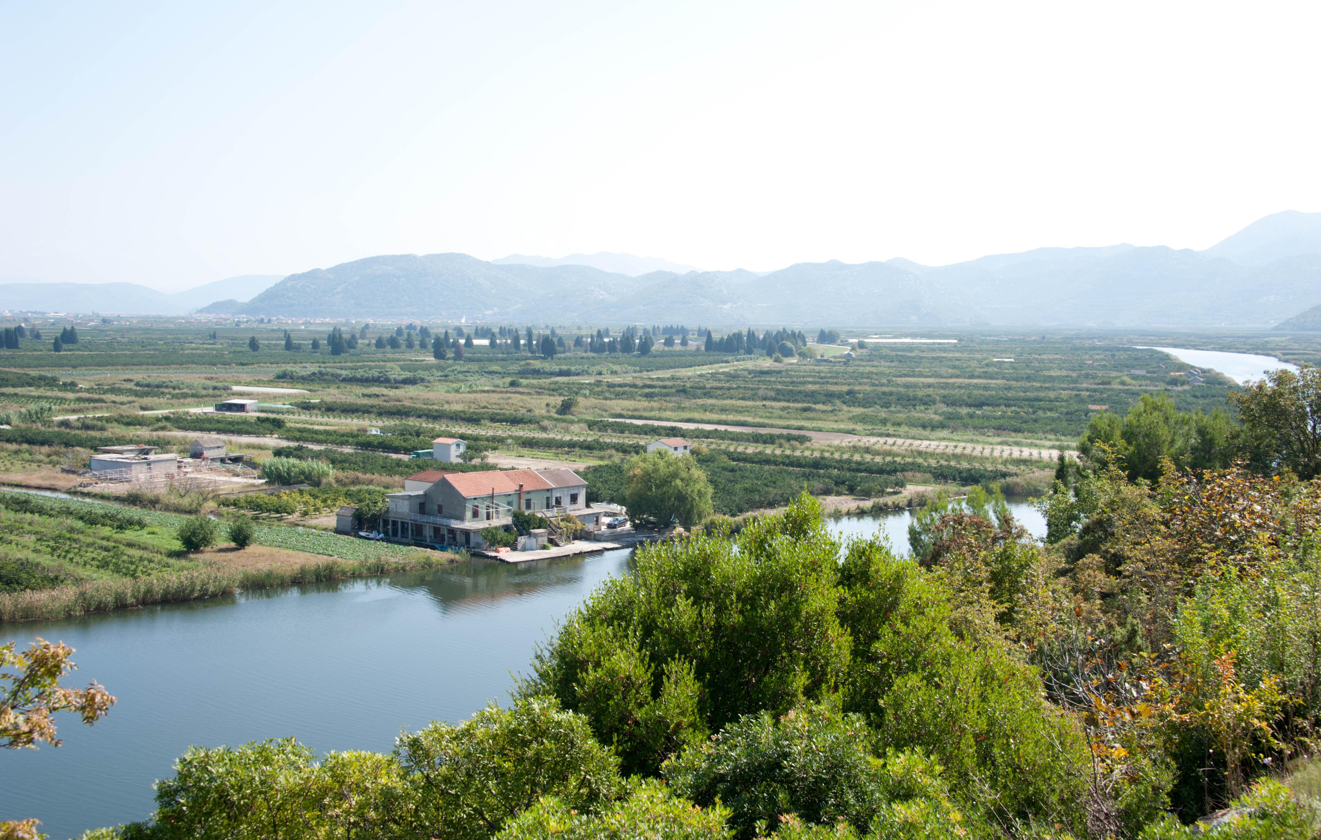 0286-Delta de la Neretva (Sud Dalmatie)