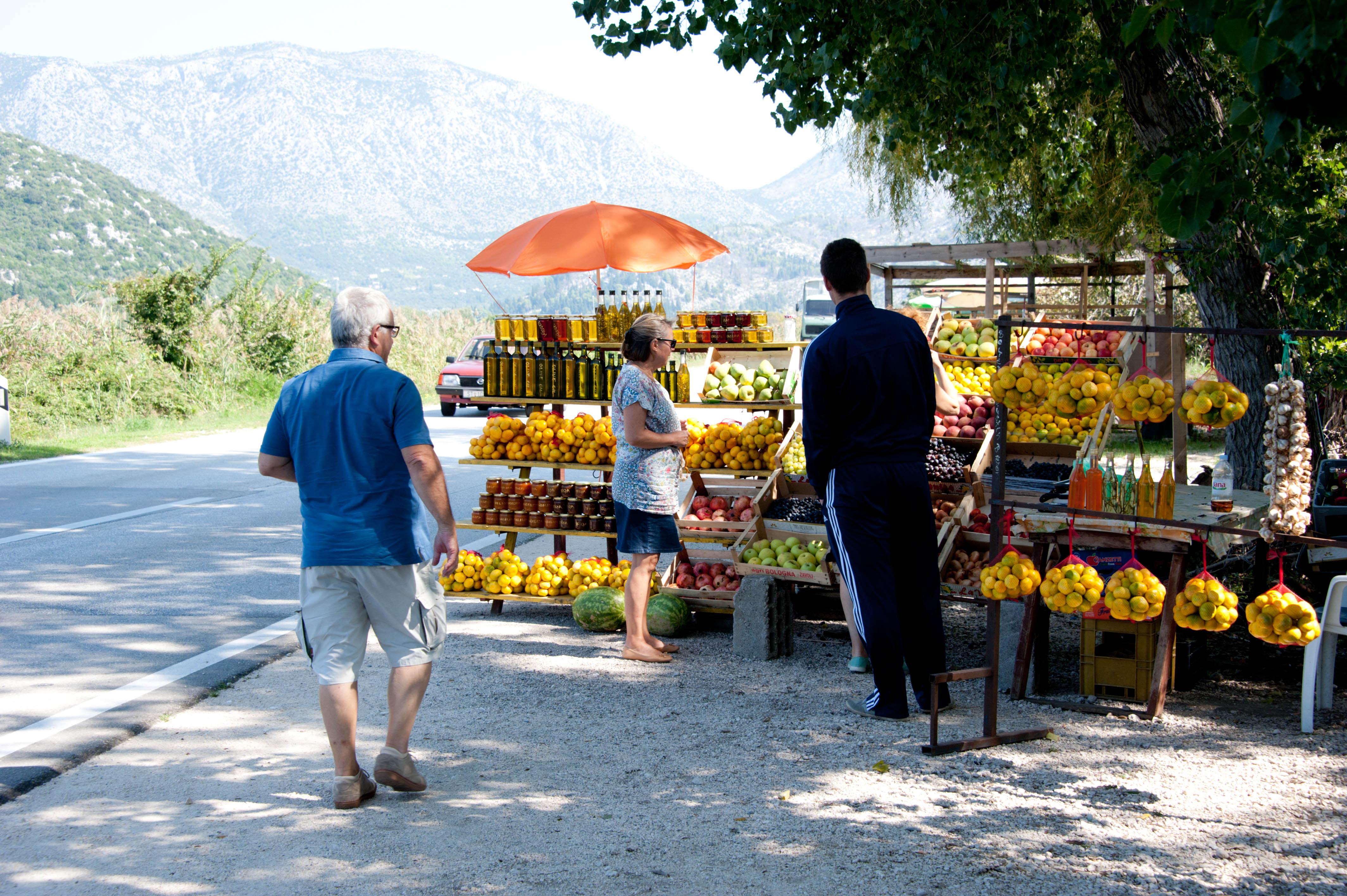 0291-Delta de la Neretva (Sud Dalmatie)