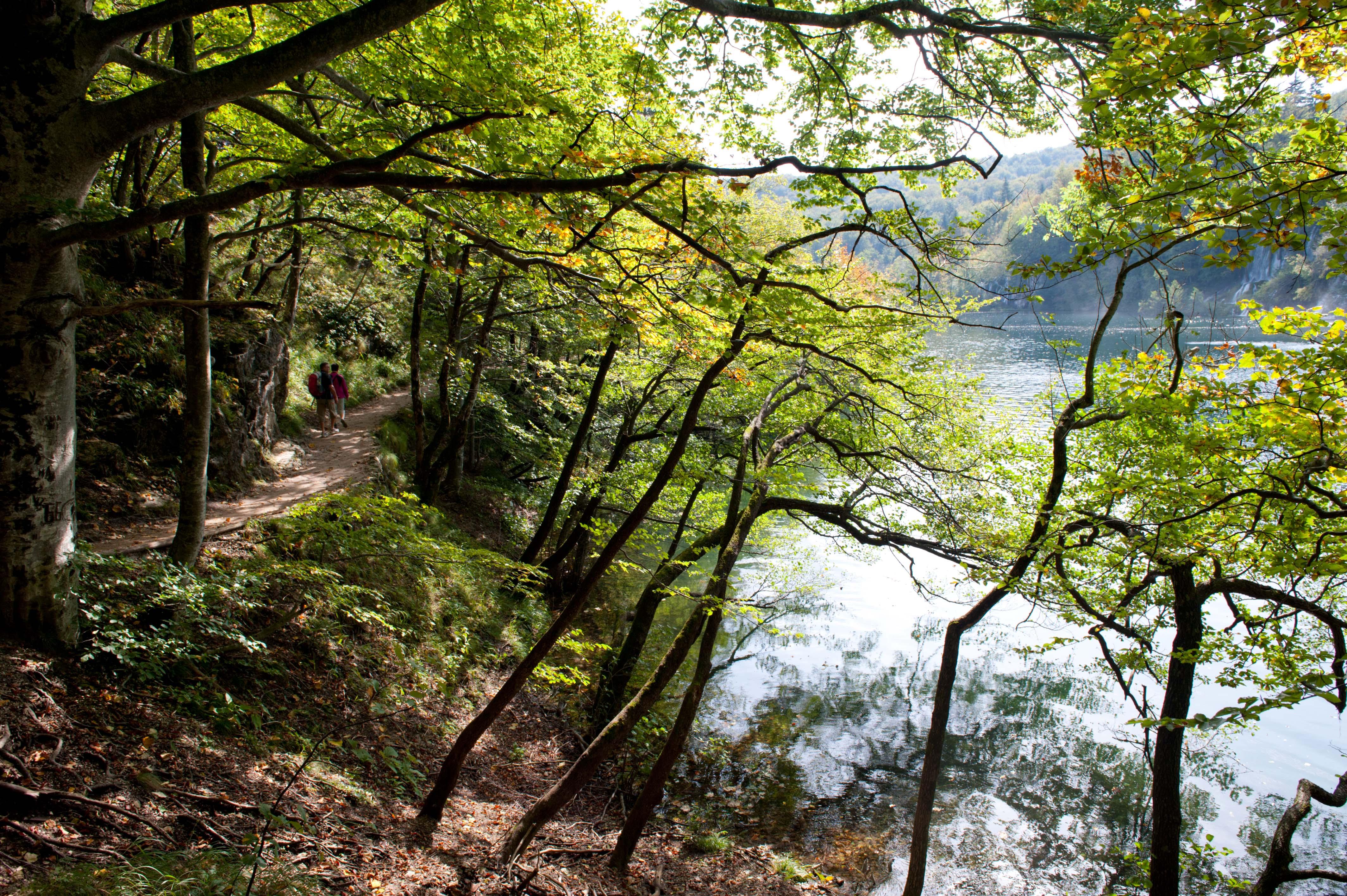 0519-Parc national lacs de Plitvice (Lika-Croatie)
