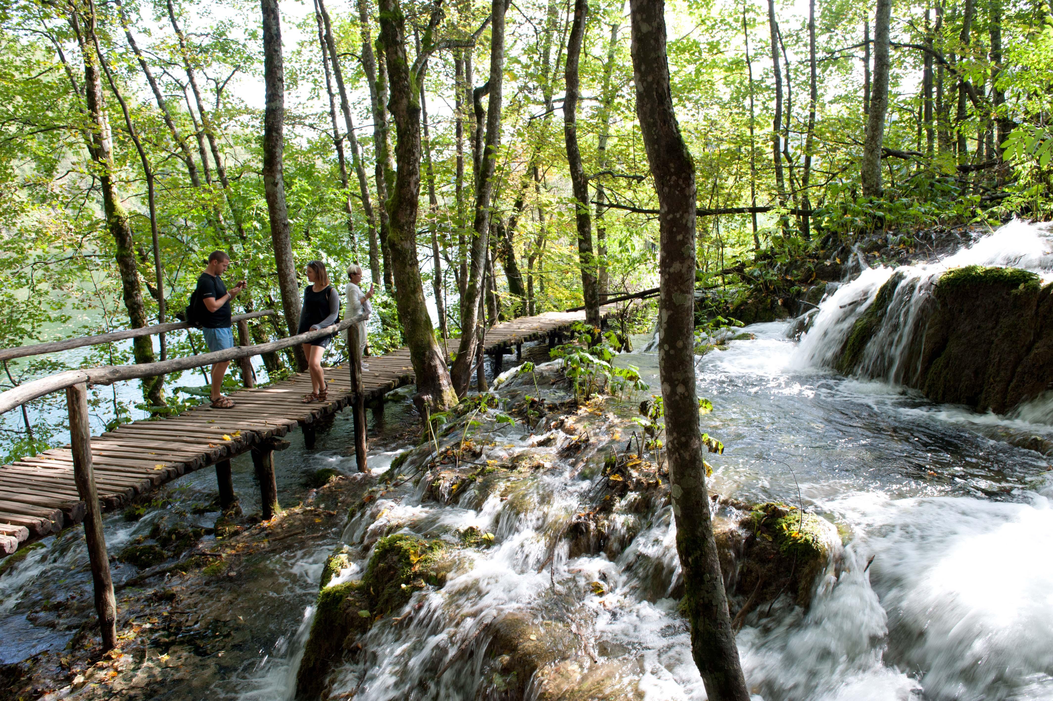 0531-Parc national lacs de Plitvice (Lika-Croatie)