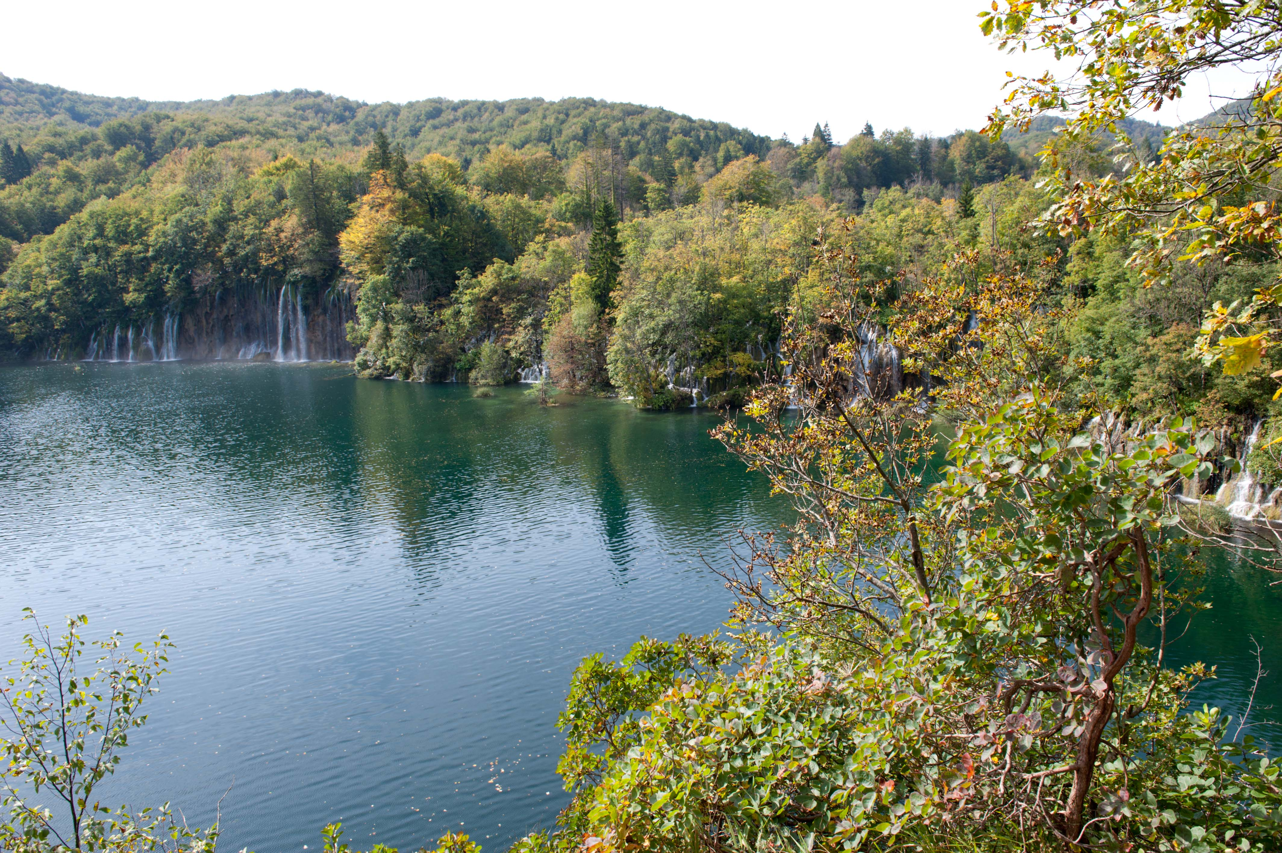 0540-Parc national lacs de Plitvice (Lika-Croatie)