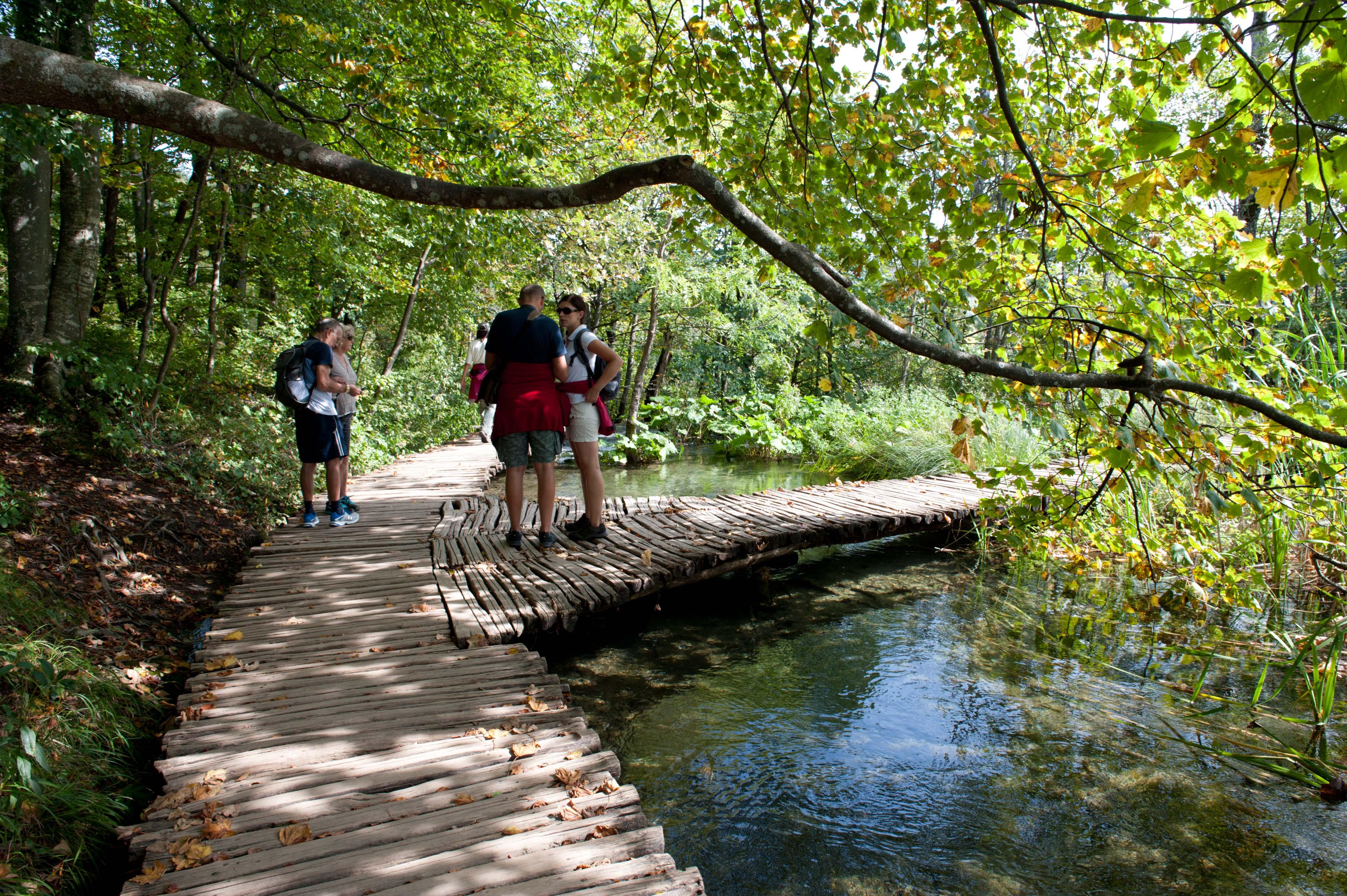 0544-Parc national lacs de Plitvice (Lika-Croatie)