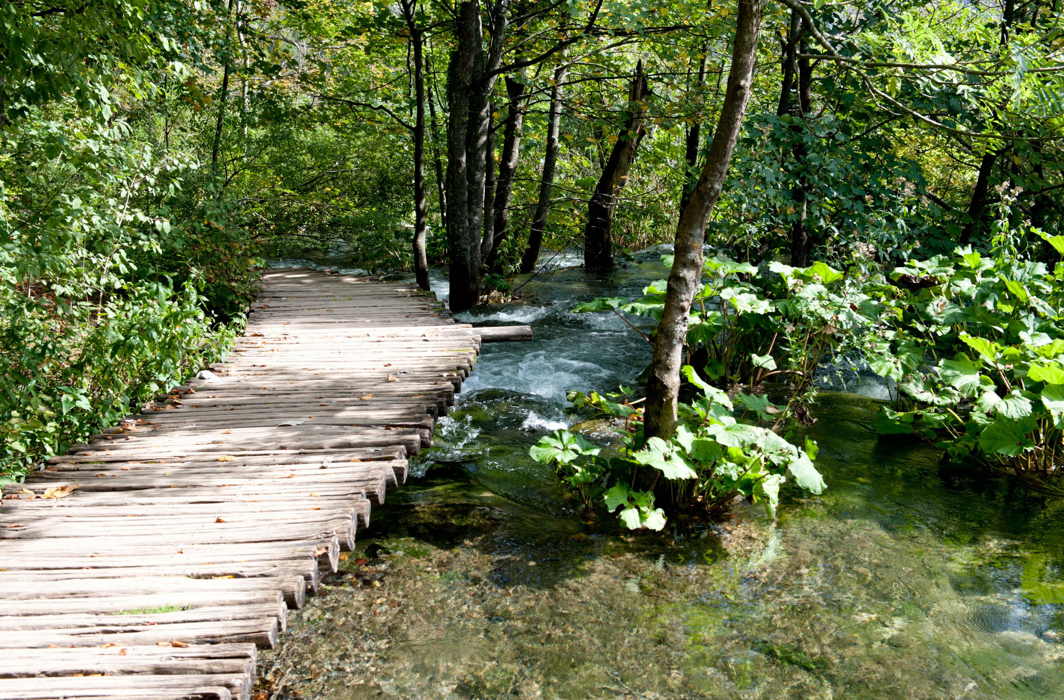 0547-Parc national lacs de Plitvice (Lika-Croatie)