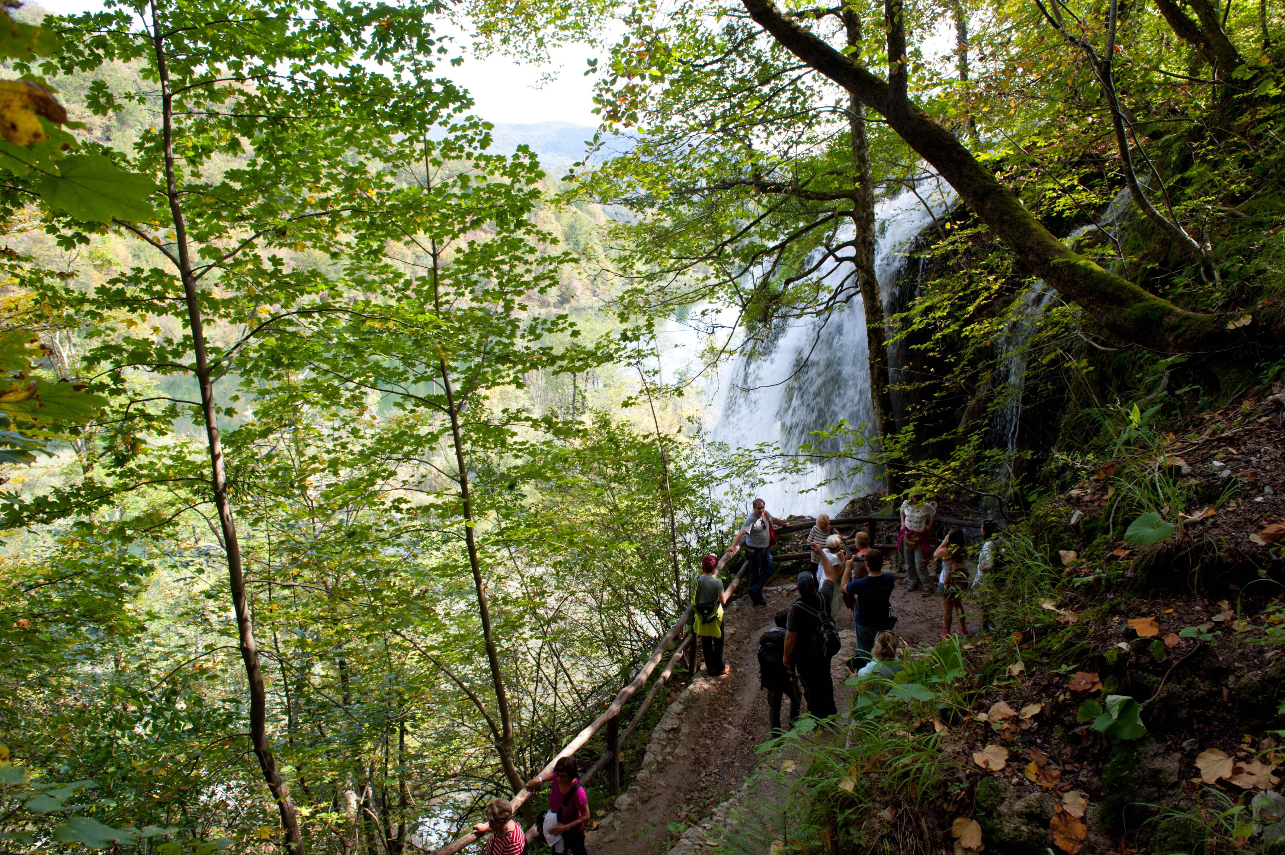 0551-Parc national lacs de Plitvice (Lika-Croatie)