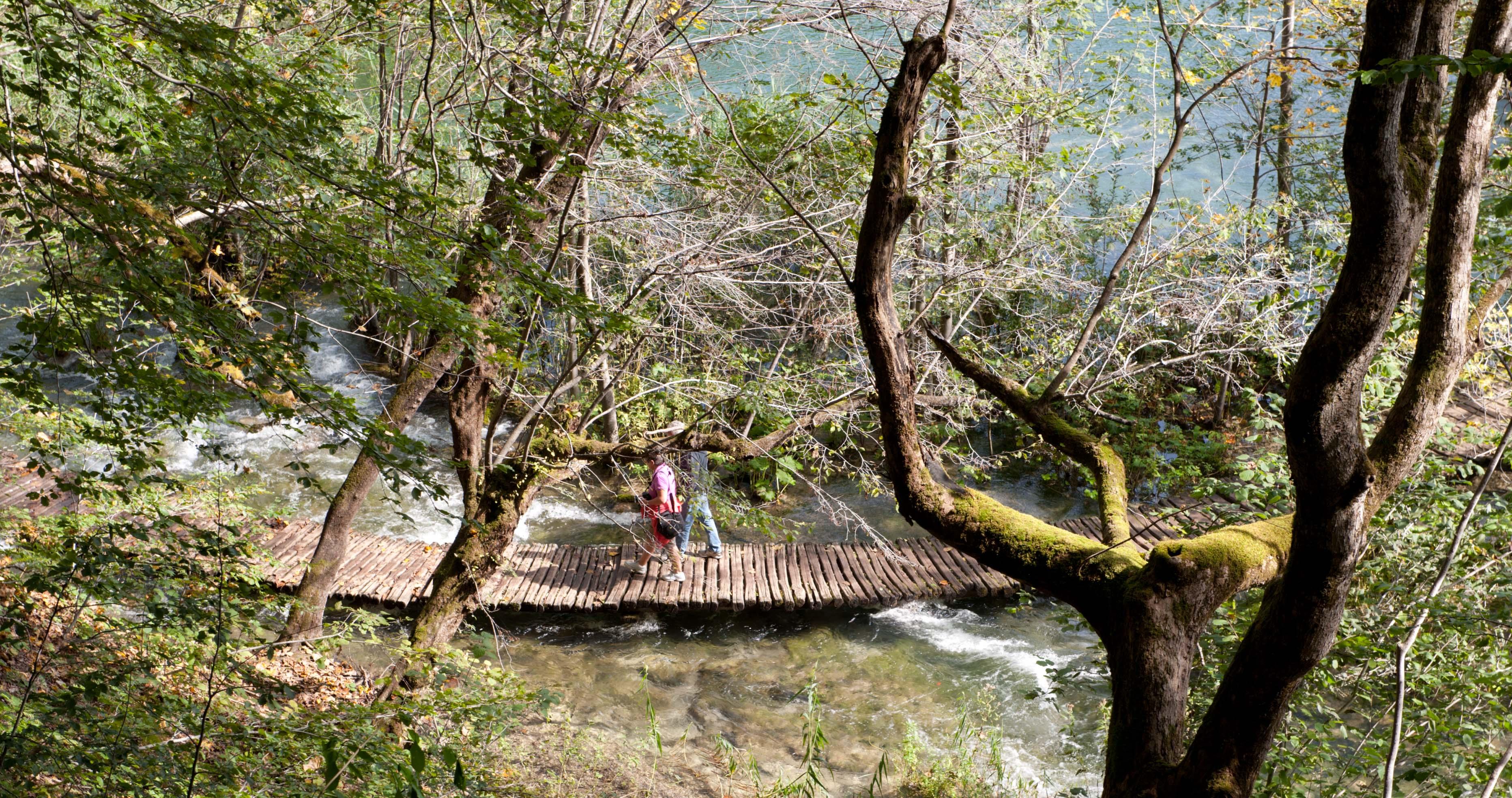 0556-Parc national lacs de Plitvice (Lika-Croatie)