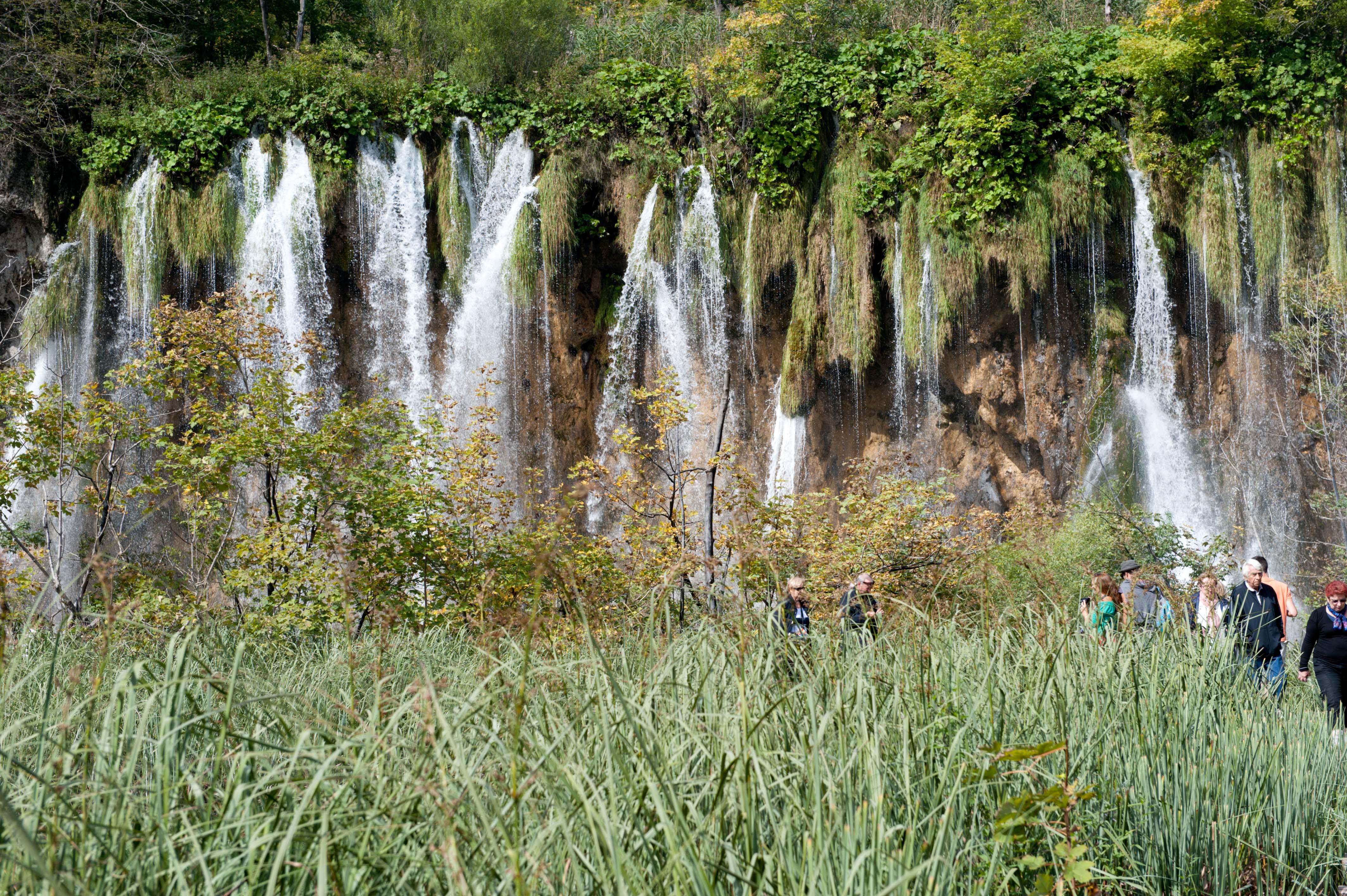 0572-Parc national lacs de Plitvice (Lika-Croatie)