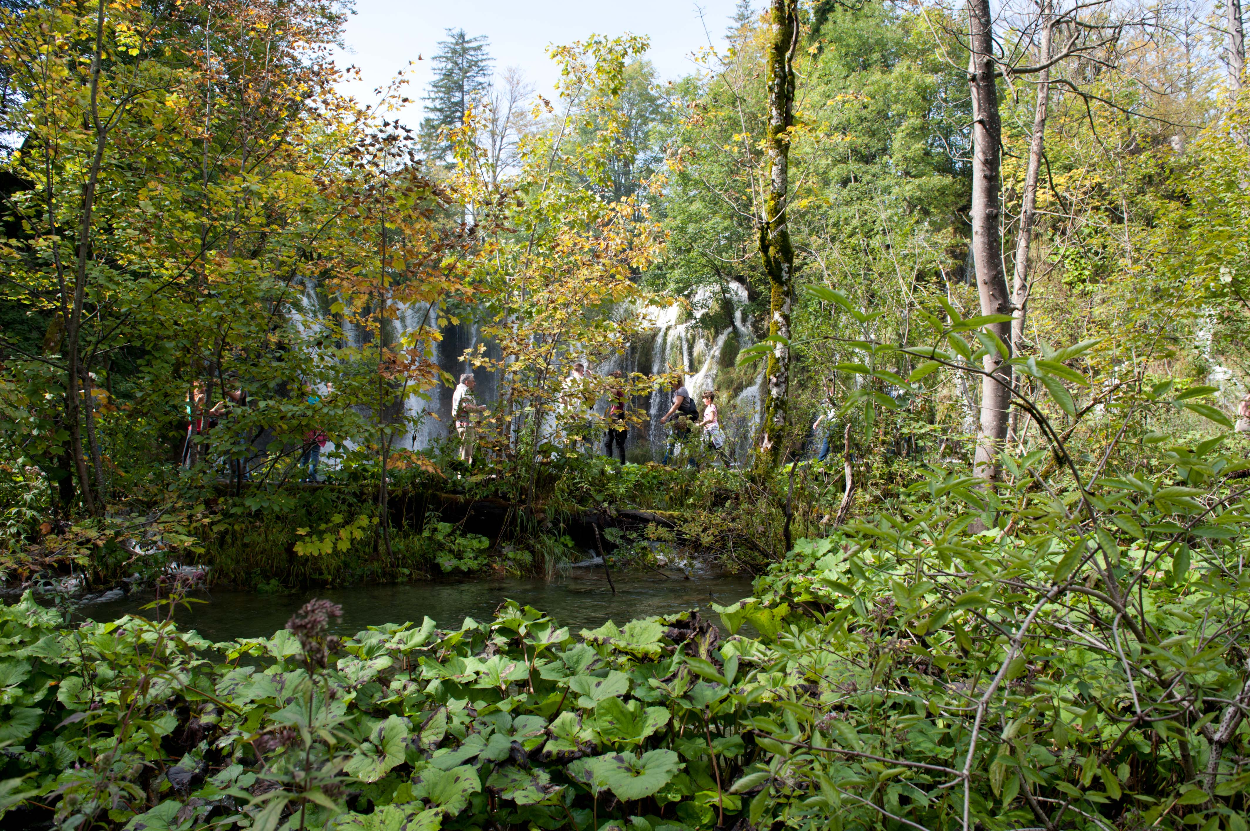0583-Parc national lacs de Plitvice (Lika-Croatie)