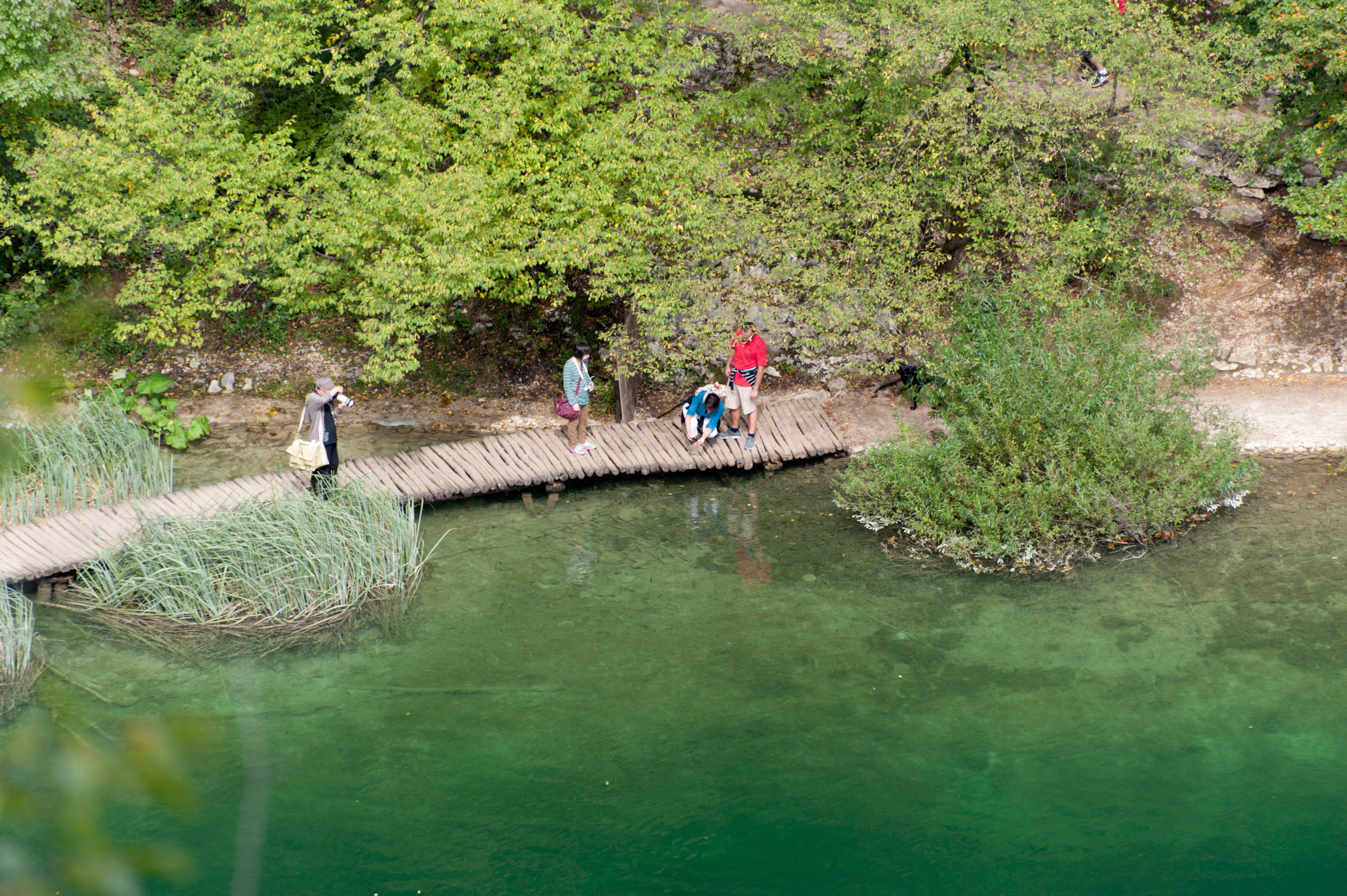 0616-Parc national lacs de Plitvice (Lika-Croatie)