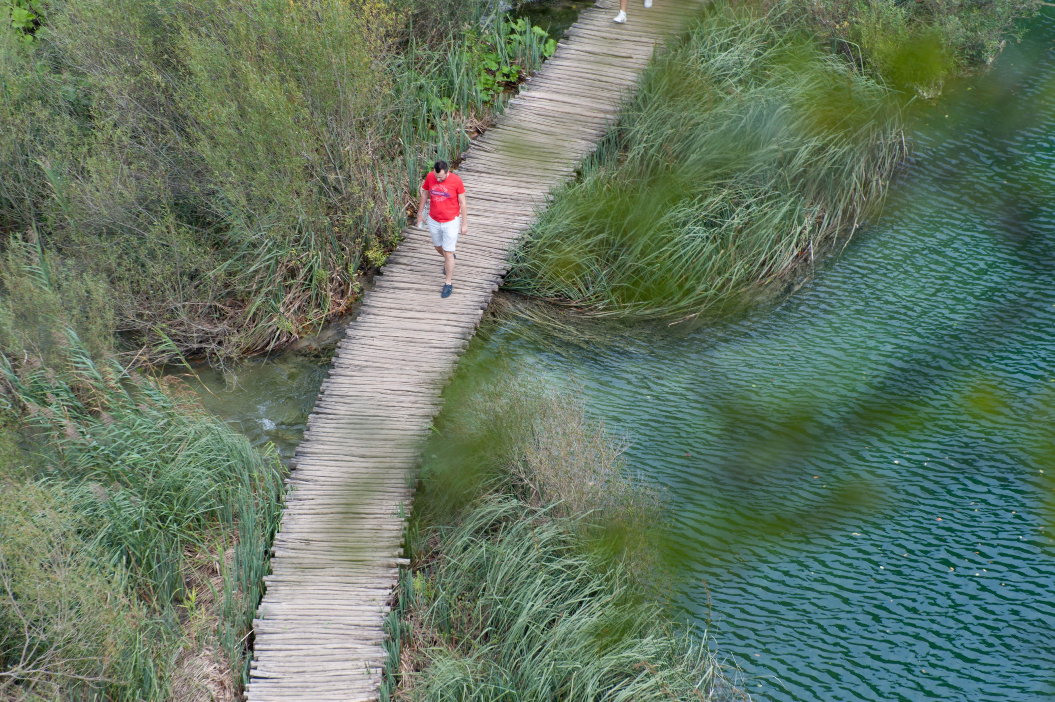0617-Parc national lacs de Plitvice (Lika-Croatie)