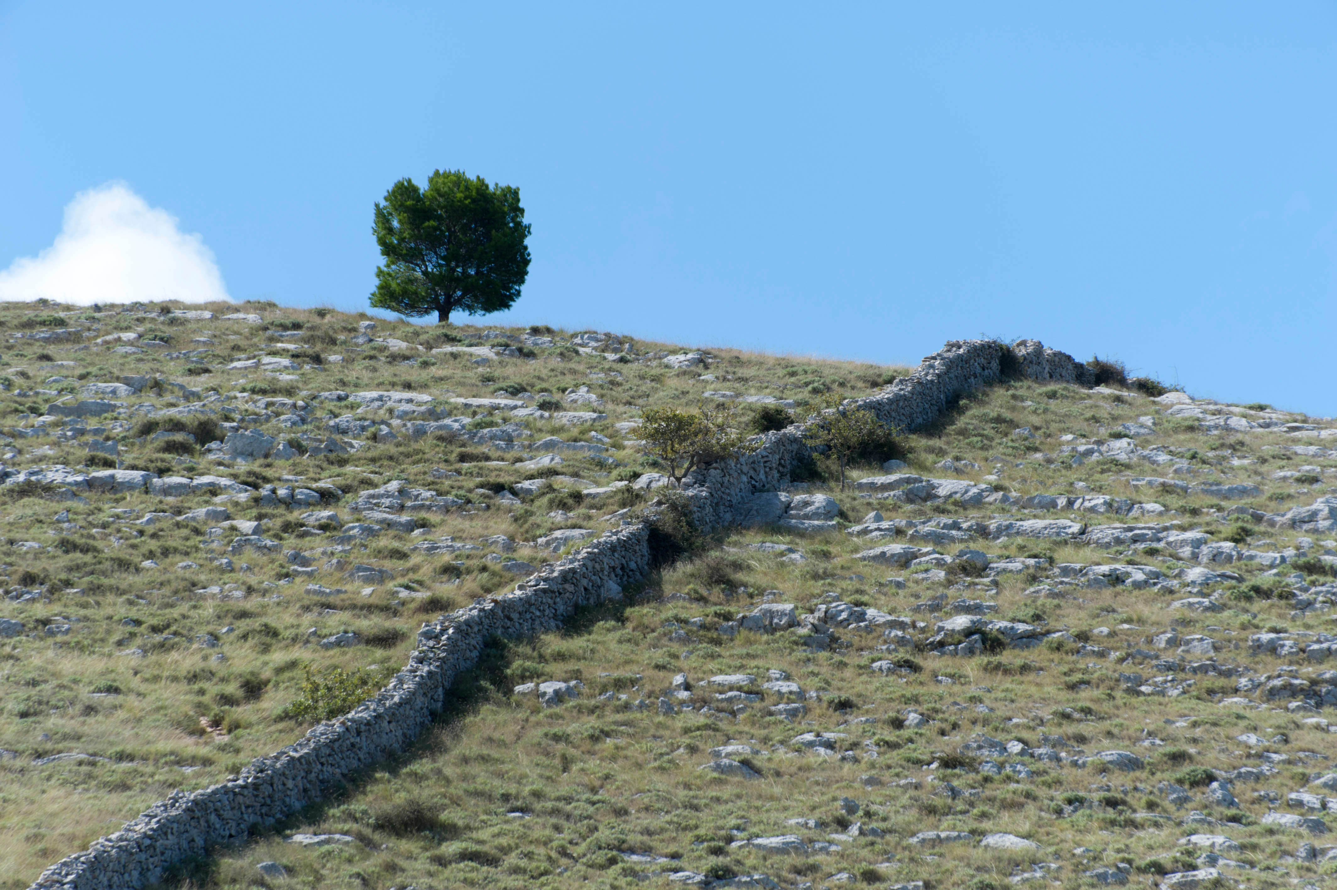 9661-Parc national iles Kornati (Dalmatie du Nord)