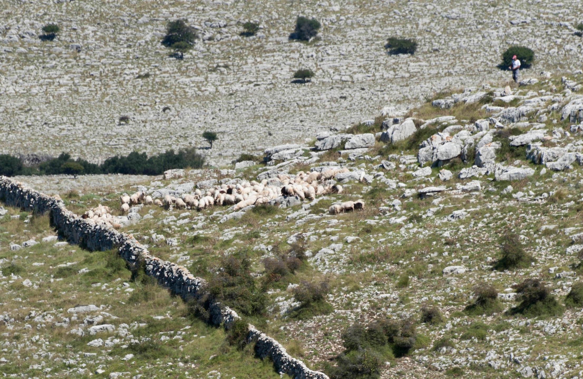 9682-Parc national iles Kornati (Dalmatie du Nord)