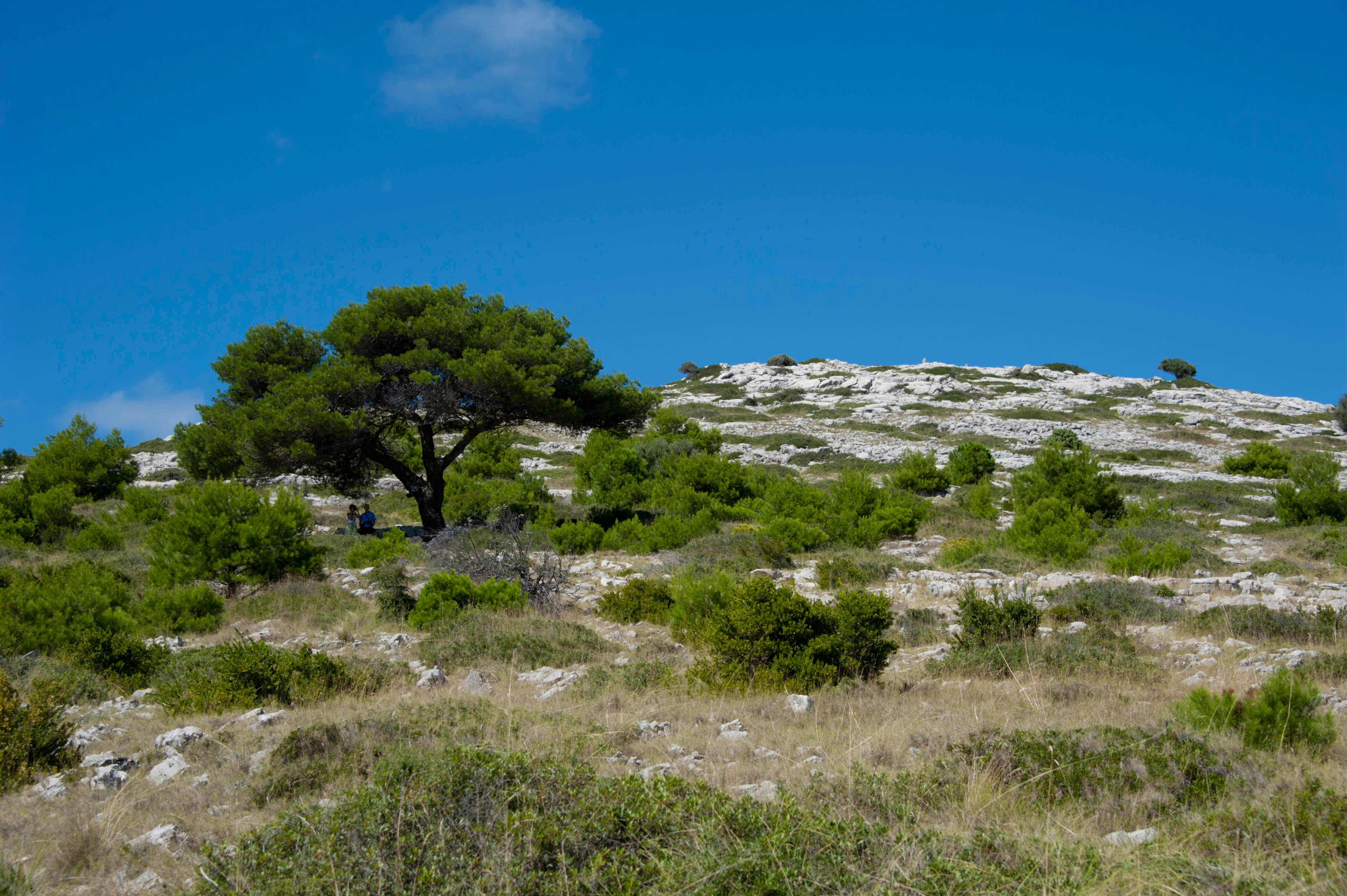 9691-Parc national iles Kornati (Dalmatie du Nord)