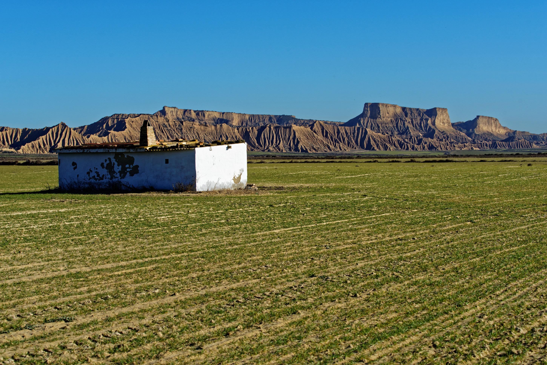 150110-BARDENAS La blanca baja - Secteur LA PISQUERA (15)