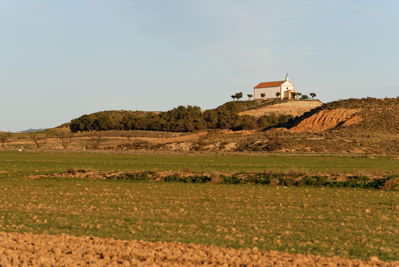 150112-Bardenas Plana de la negra - Piste de Portimayor (10)
