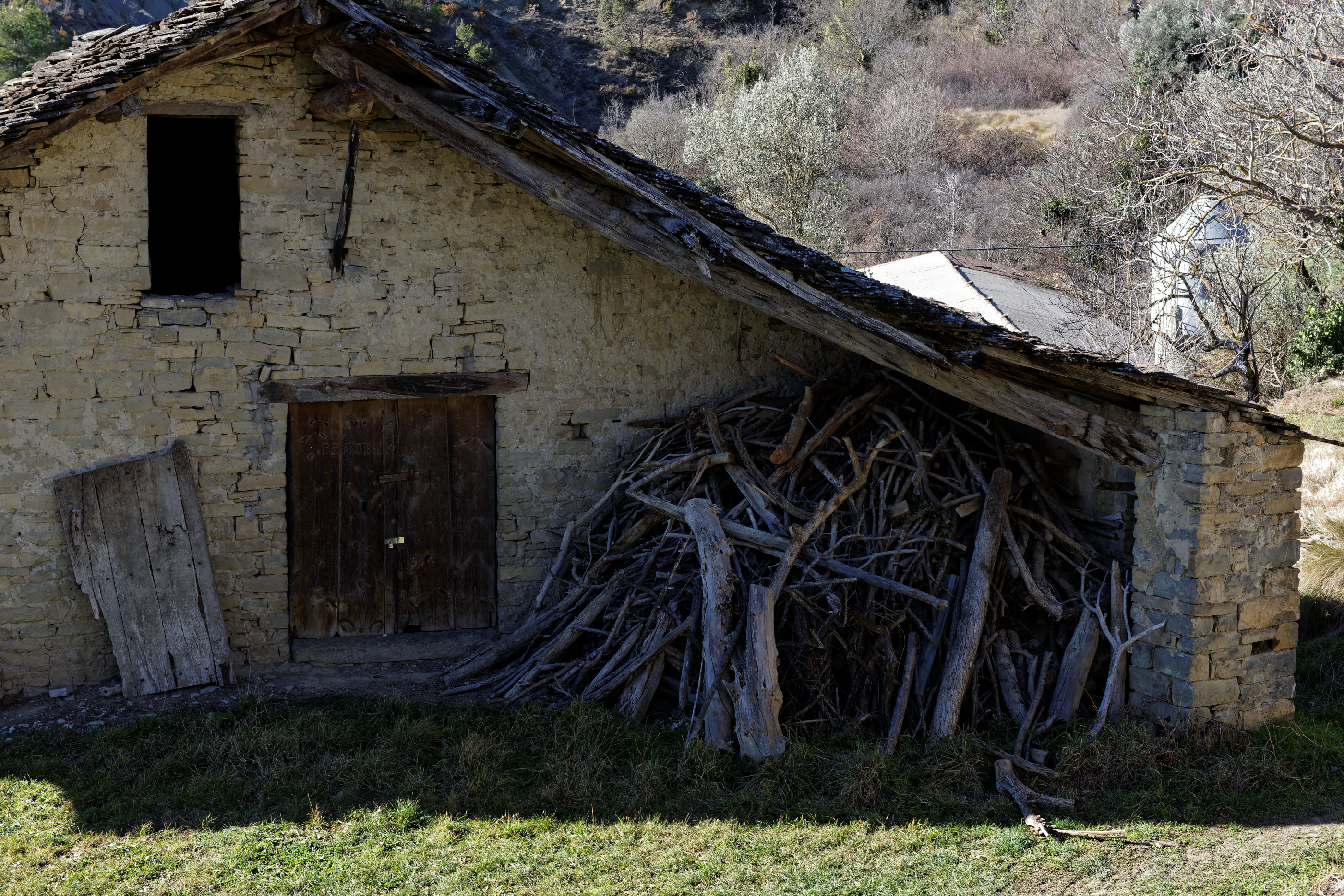 150125-Charo (Sobrarbe-La Fueva) (18)