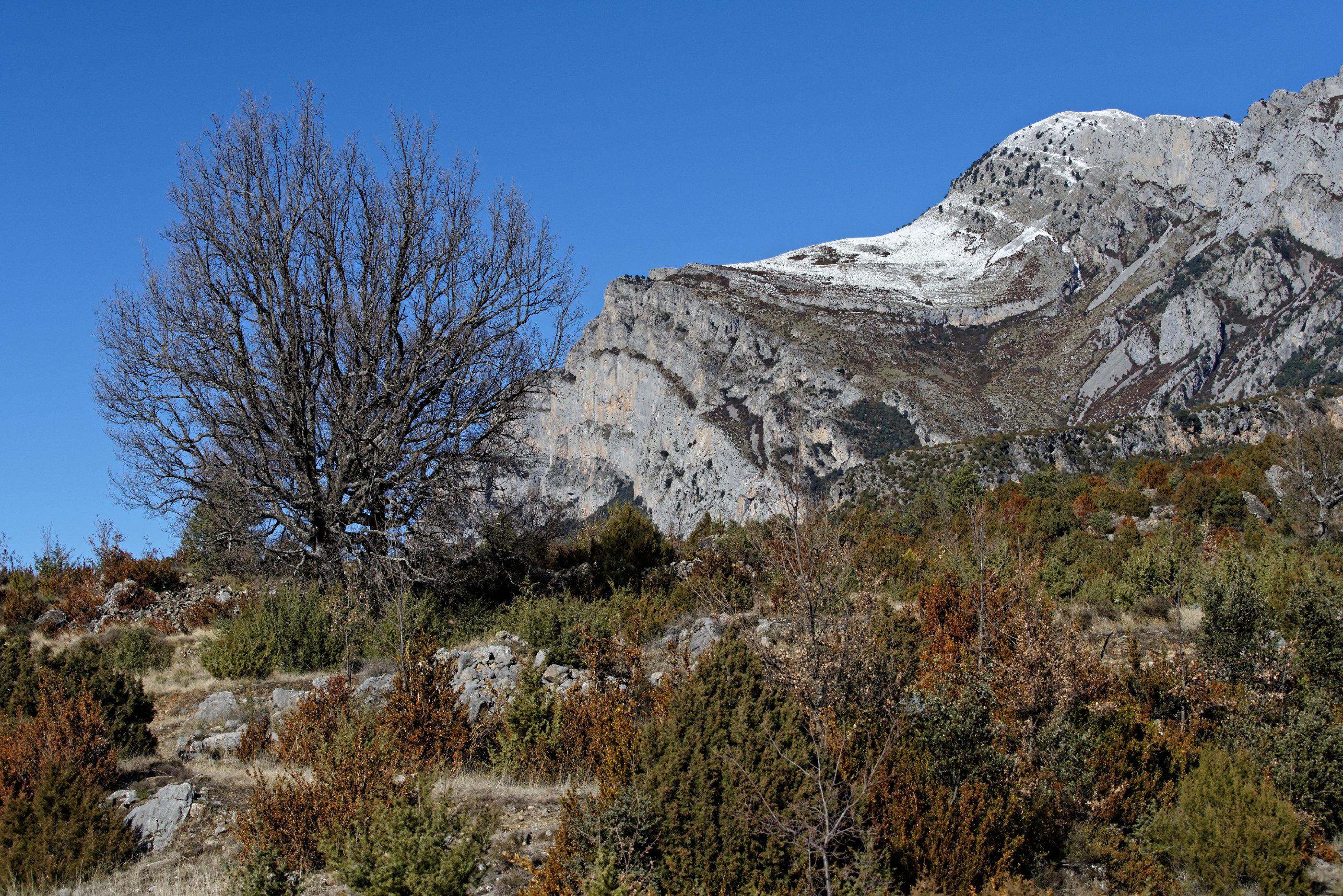 150125-Route FosadoLos Molinos (Sobrarbe-La Fueva) (23)