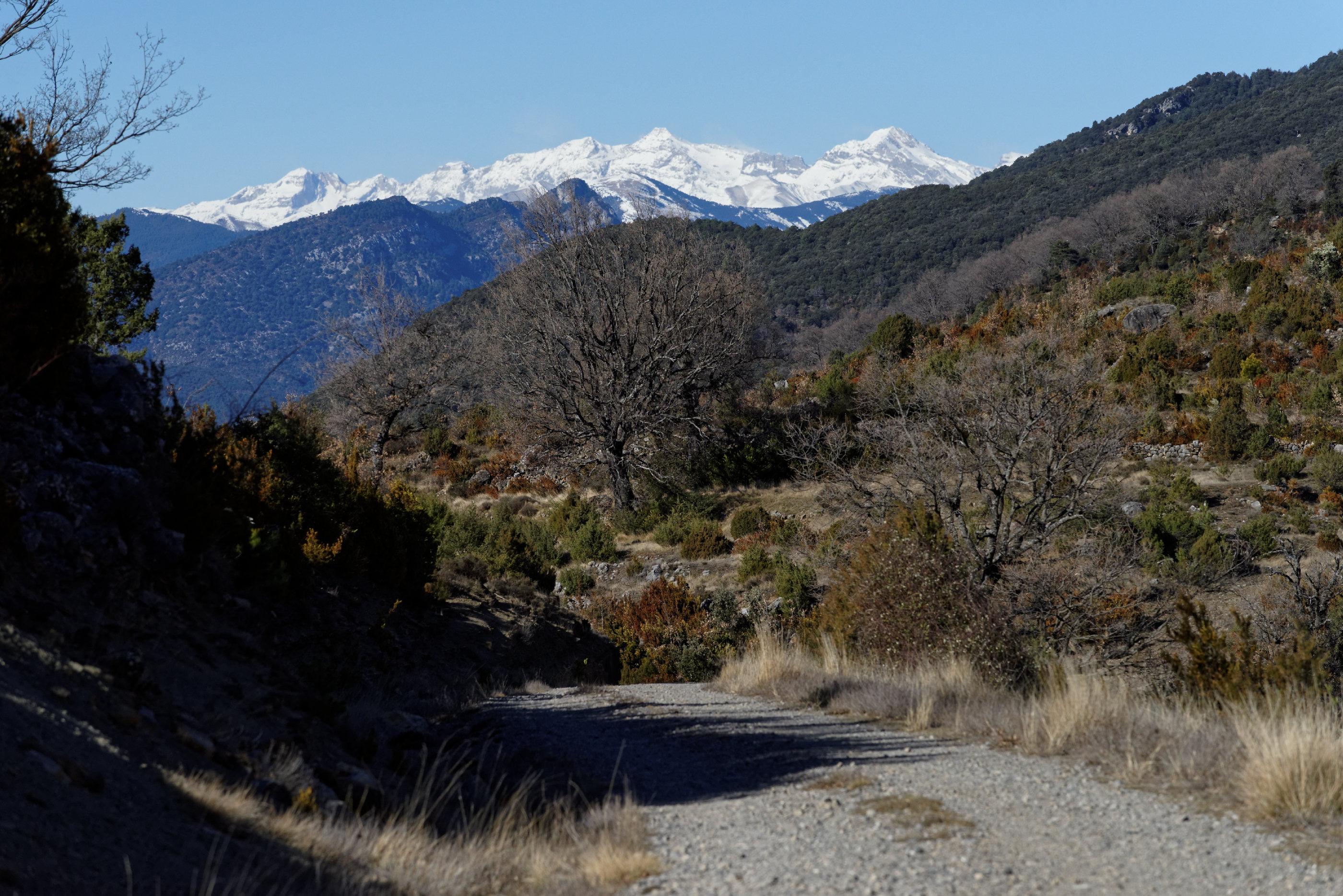 150125-Route FosadoLos Molinos (Sobrarbe-La Fueva) (32)