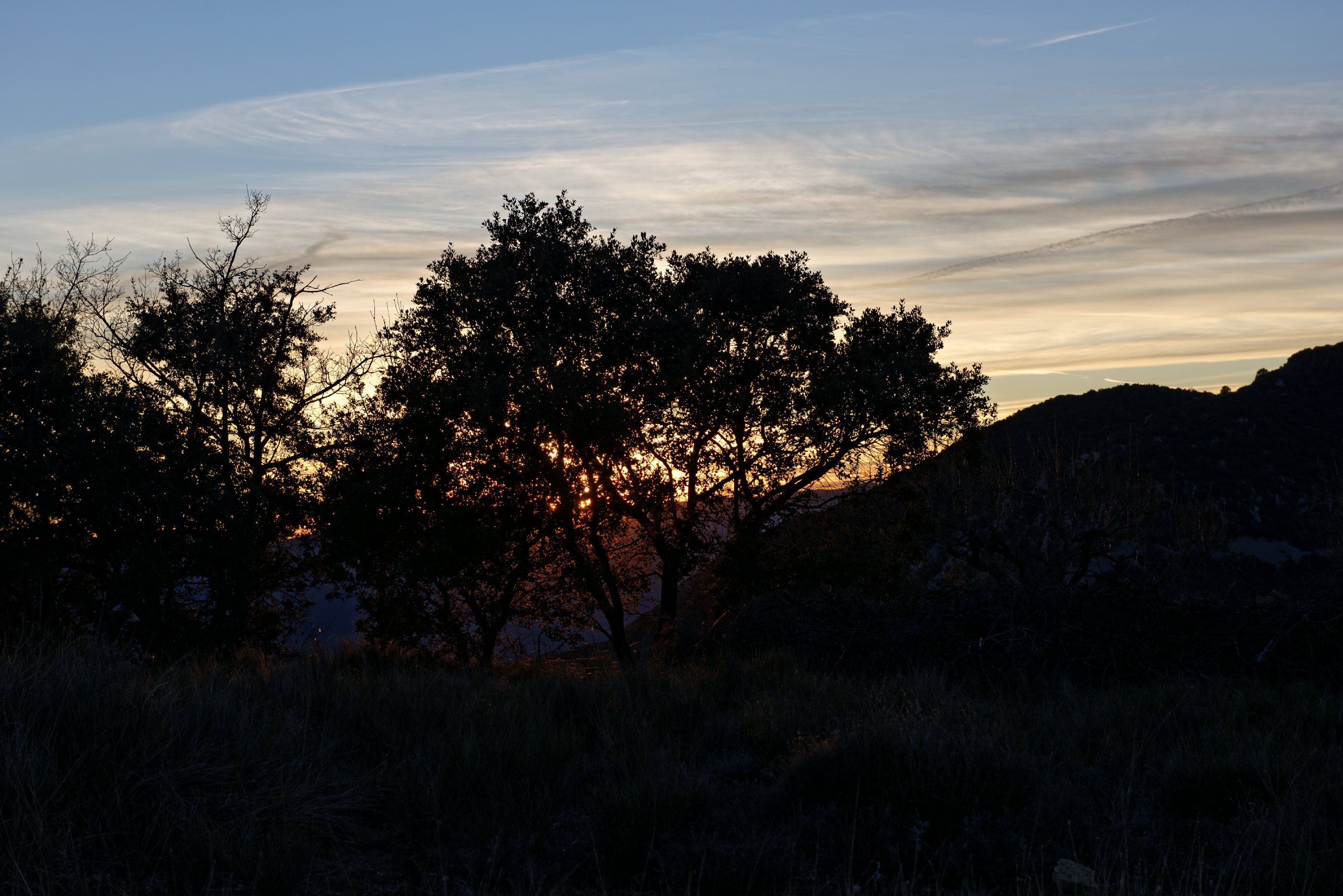 150125-Route de Trillo (Sobrarbe-La Fueva) (21)