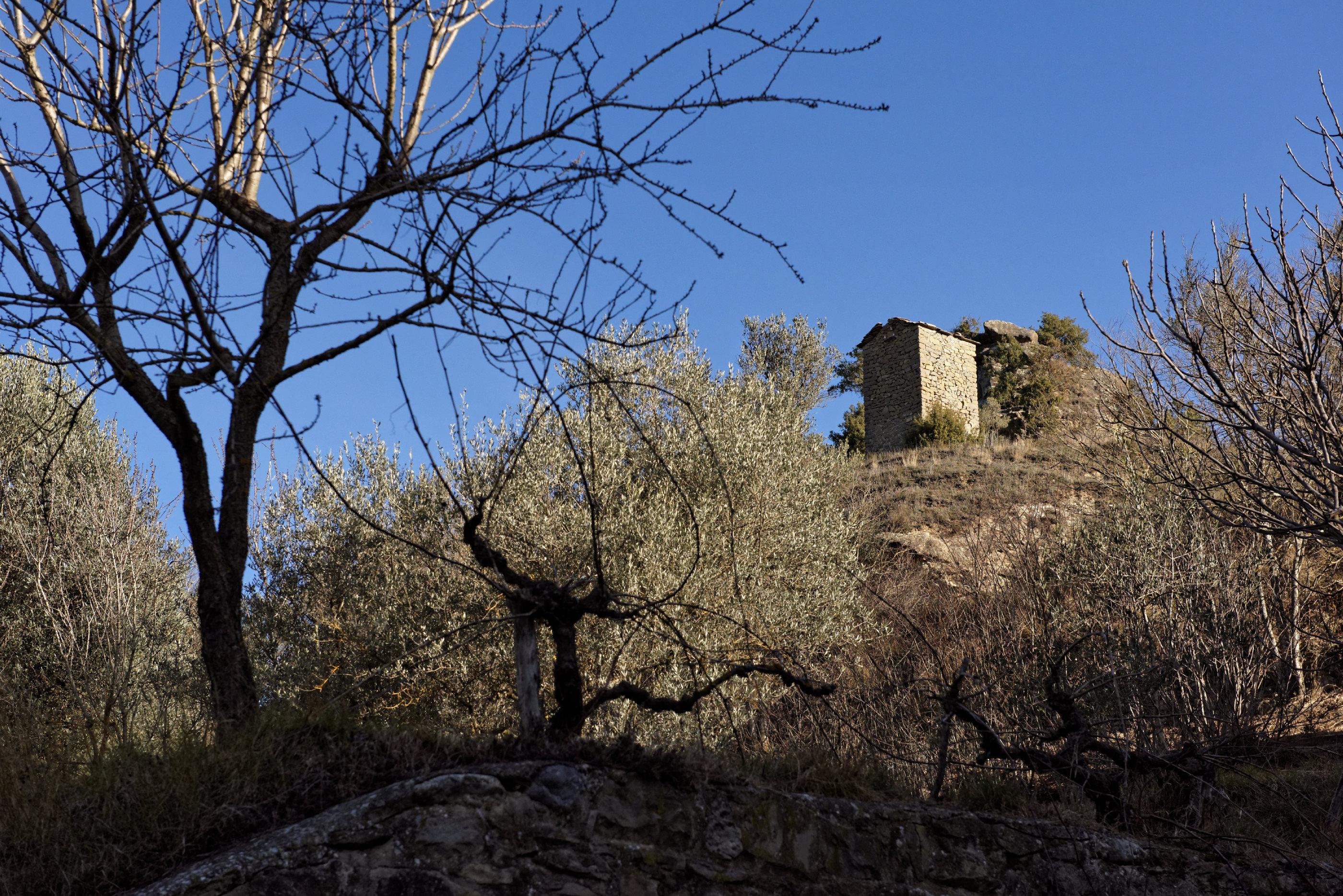 150127-Casteron de Sobrarbe  (Sobrarbe-Ainsa) (18)