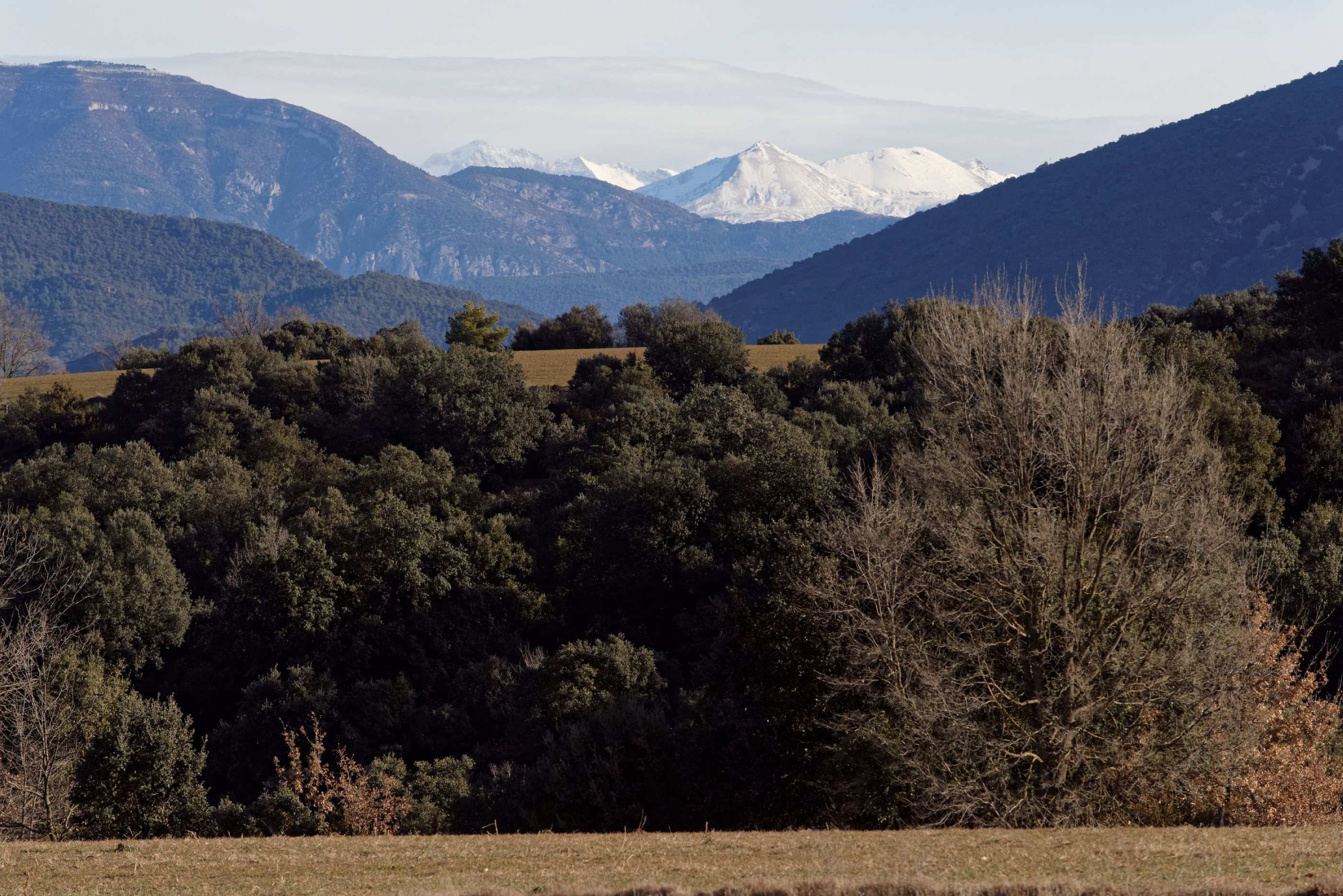 150127-Javierre (Sobrarbe-Ainsa) (12)