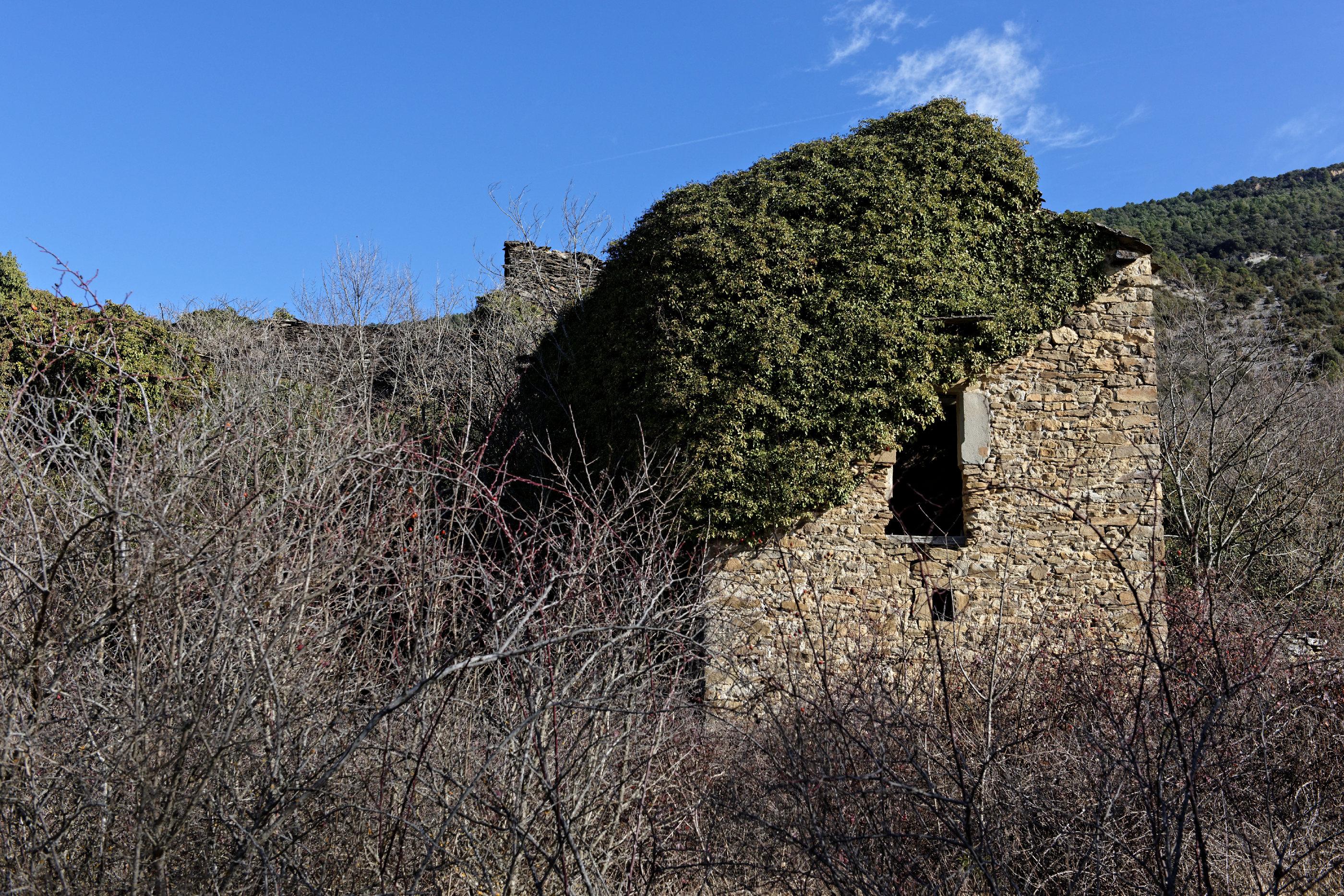 150128-Arasanz(Sobrarbe La Fueva) (45)