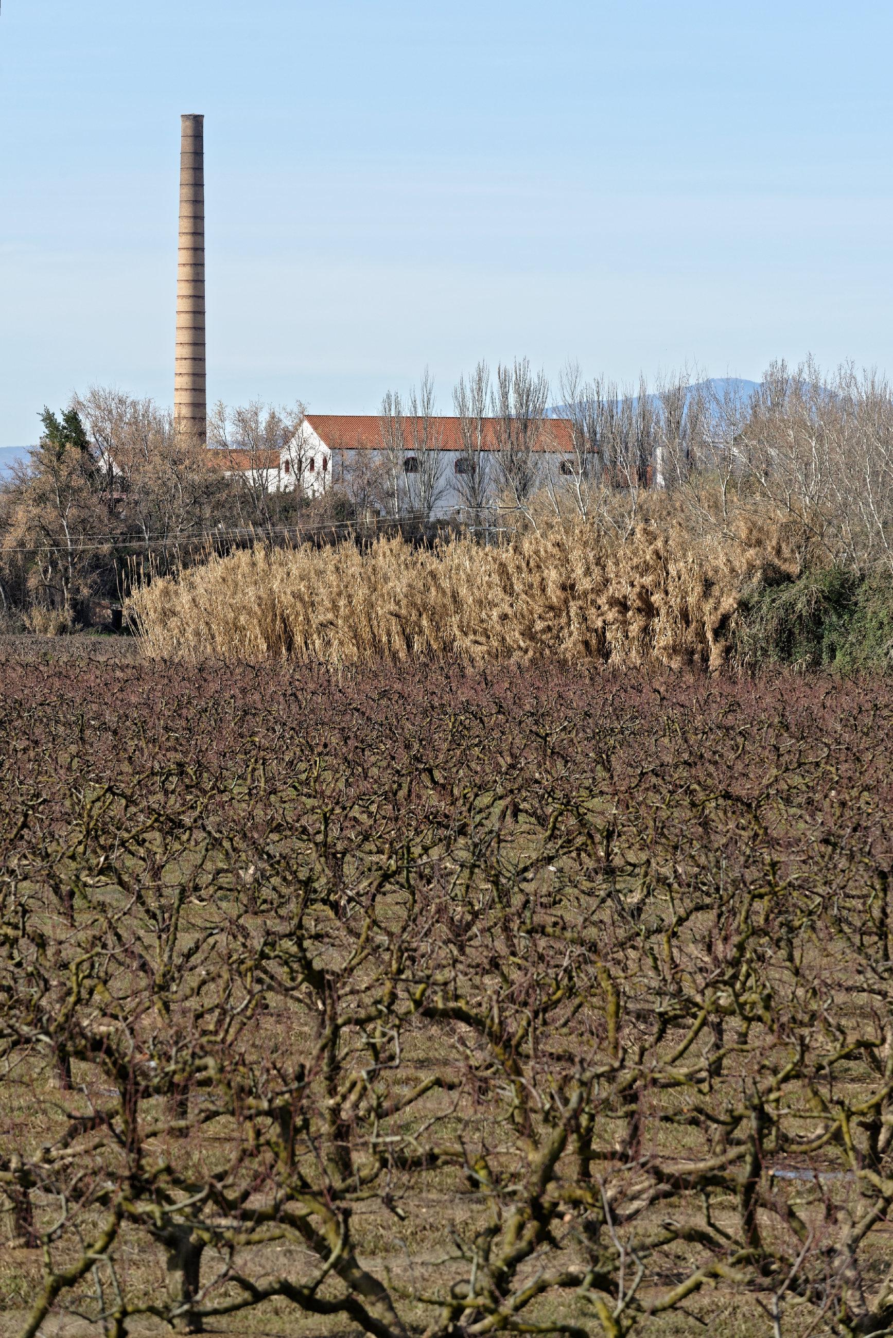 150308-Alfaro - Los Sotos del Ebro (La Rioja) (30)