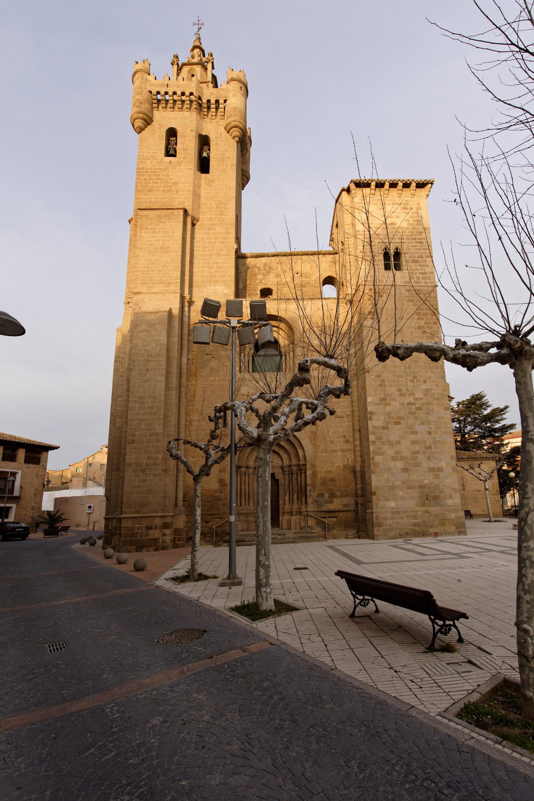 150309-Ejea de los caballeros  (Aragon-Cinco villas) (24)