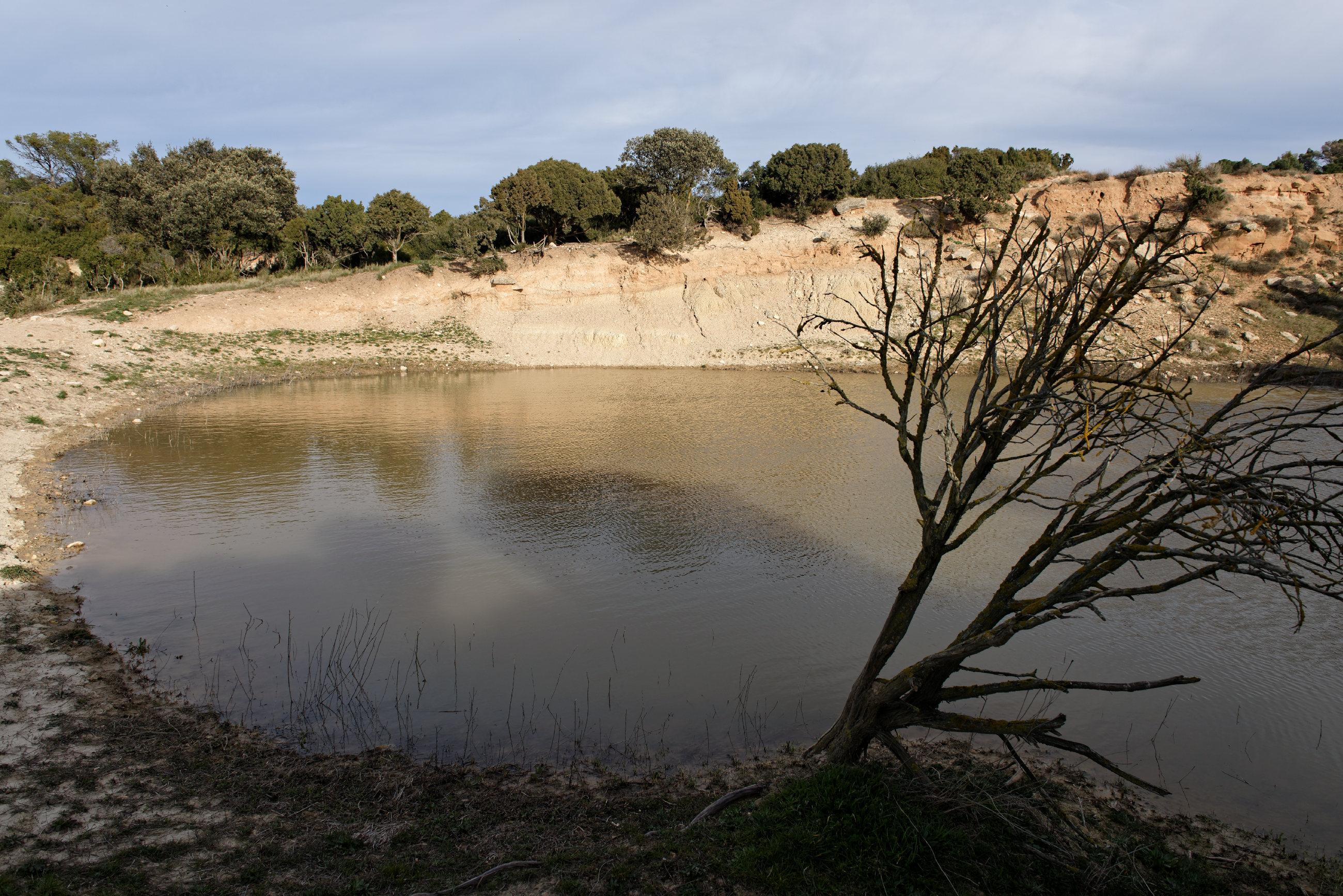 150309-Piste Sanctuaire Sanco Abarca-NA125 (Bardenas La negra) (42)
