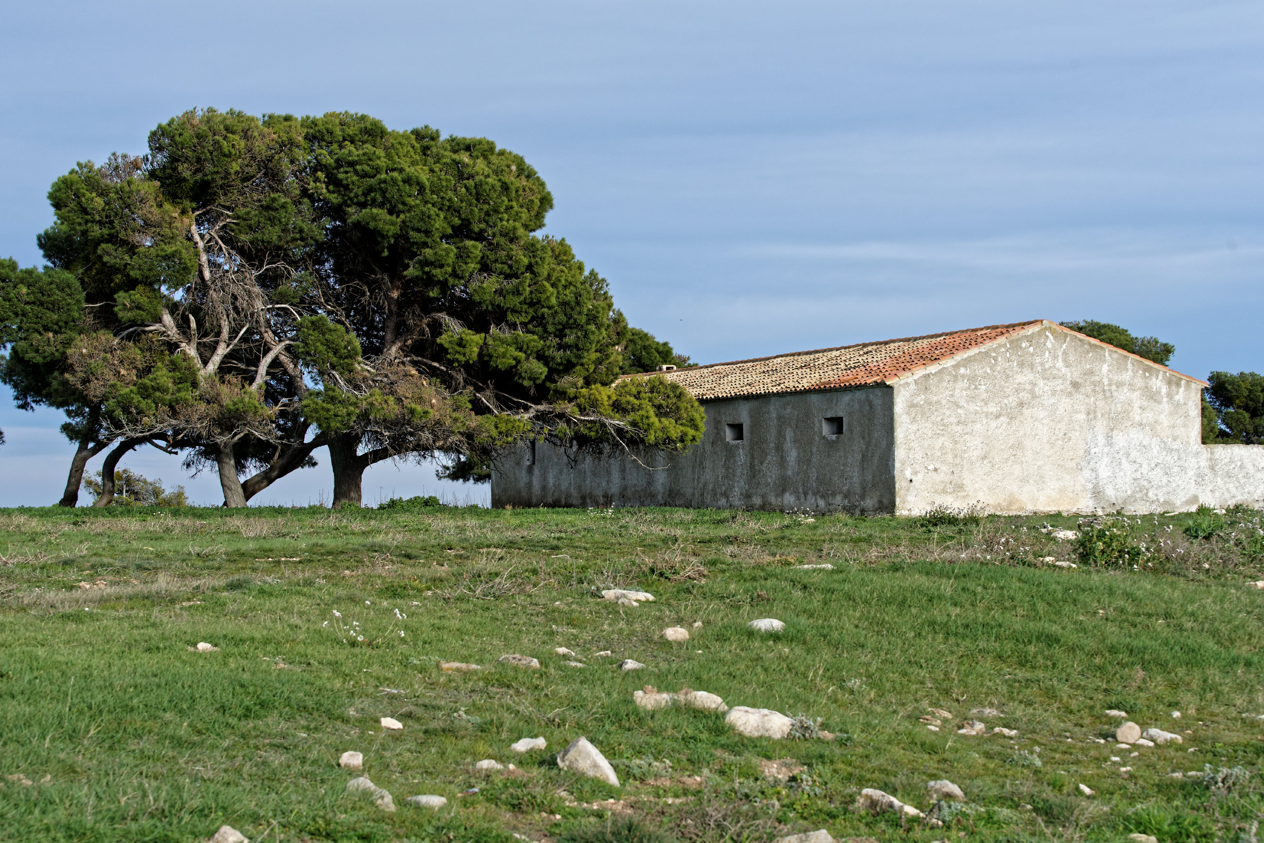 150309-Piste Sanctuaire Sanco Abarca-NA125 (Bardenas La negra) (50)