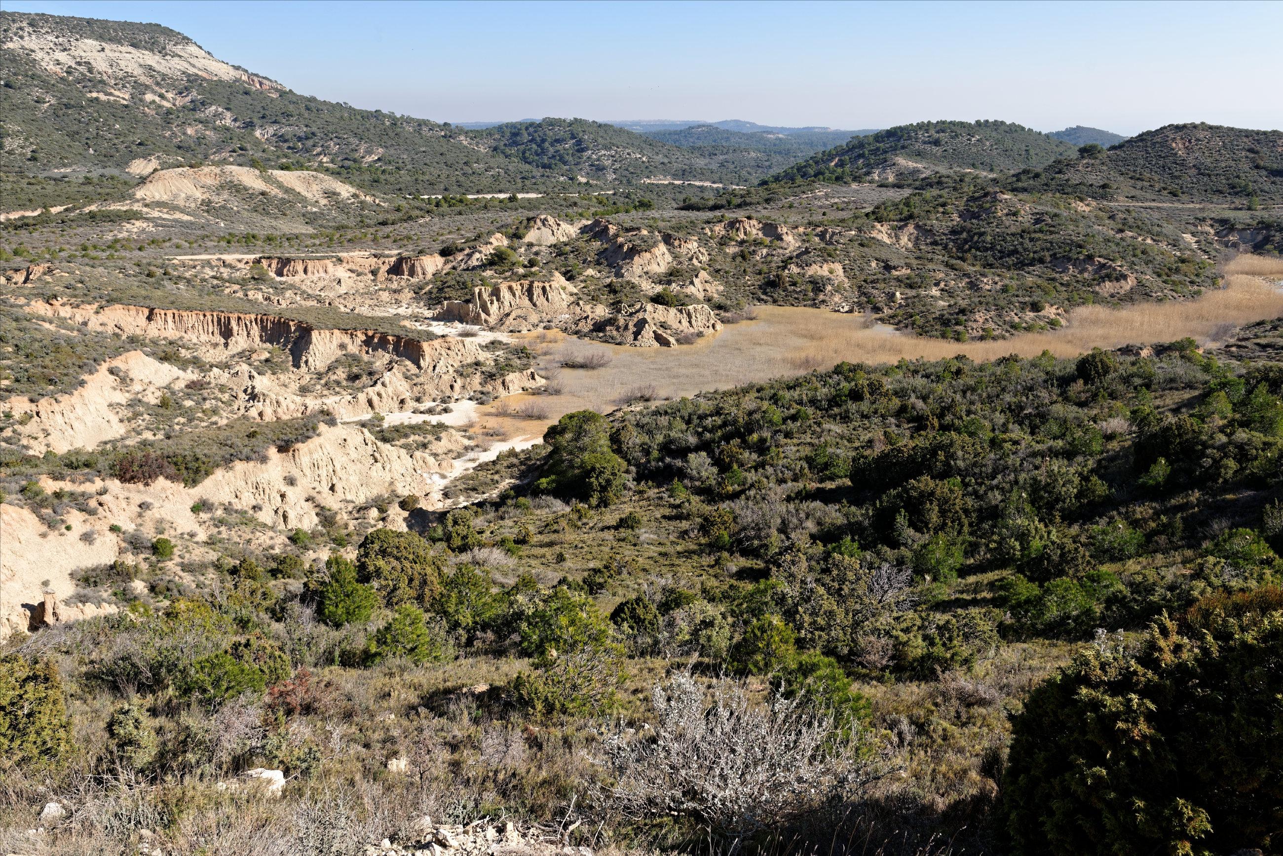 150311-Piste Balsa de Antonio (Aragon) (17)