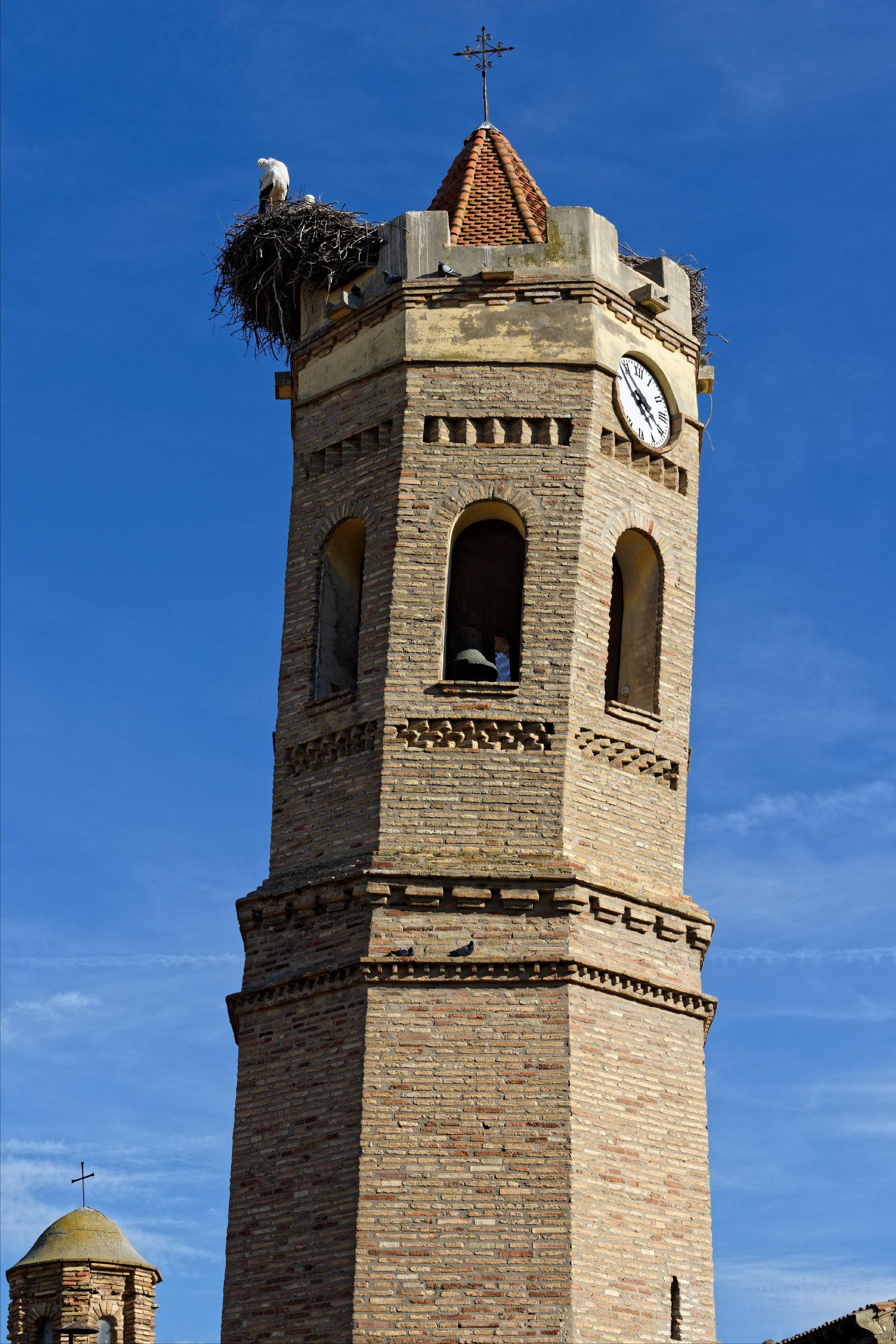150311-Pradilla de Ebro (Aragon)  (1)