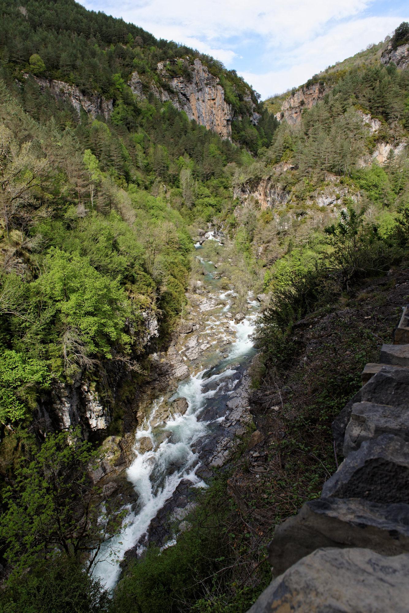 150427-Canyon de Anisclo (Sobrarbe) (36)