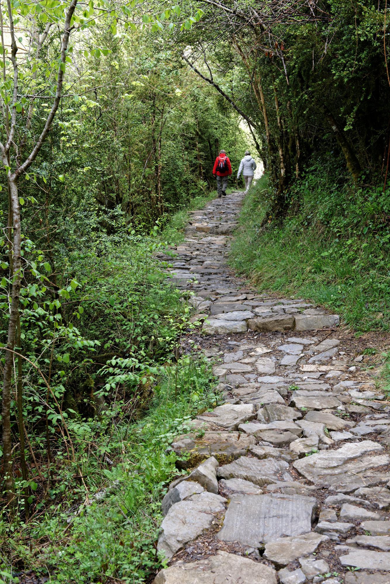 150427-Canyon de Anisclo (Sobrarbe) (37)