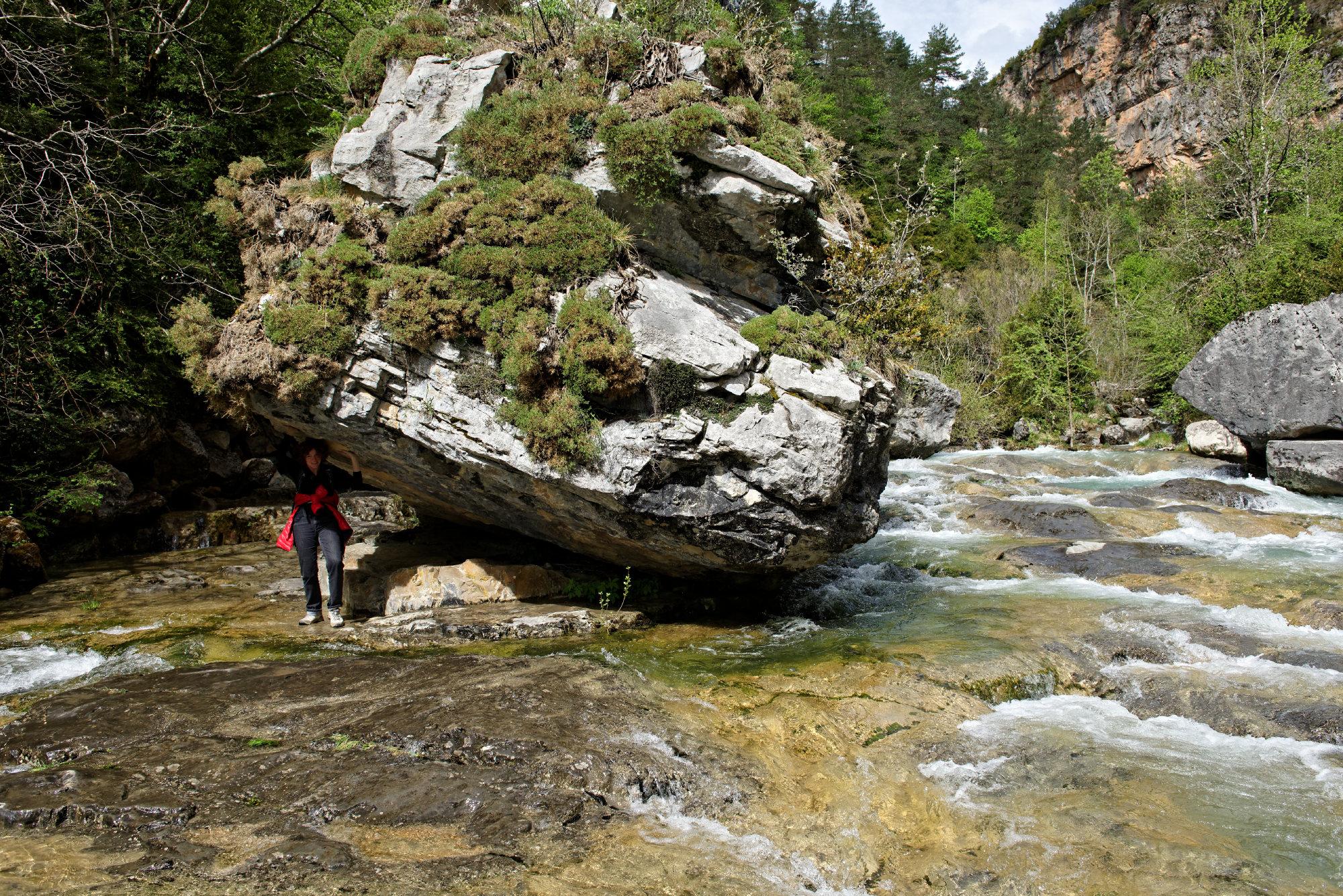 150427-Canyon de Anisclo (Sobrarbe) (53)