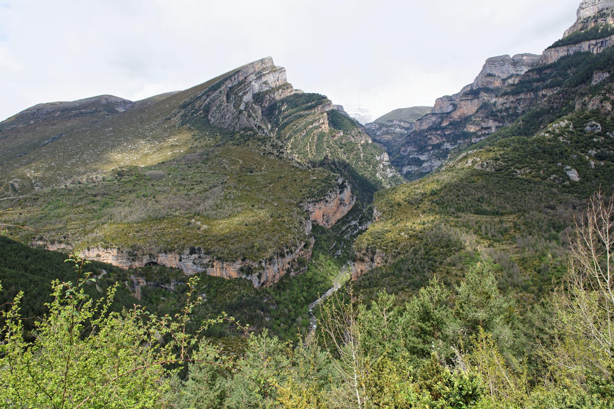 150427-Canyon de Anisclo (Sobrarbe) (64)