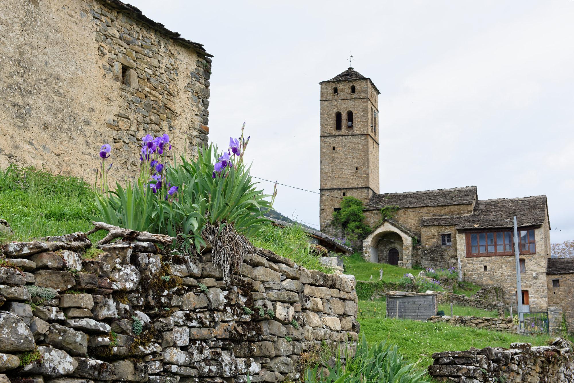 150430-Yeba (Sobrarbe) (20)
