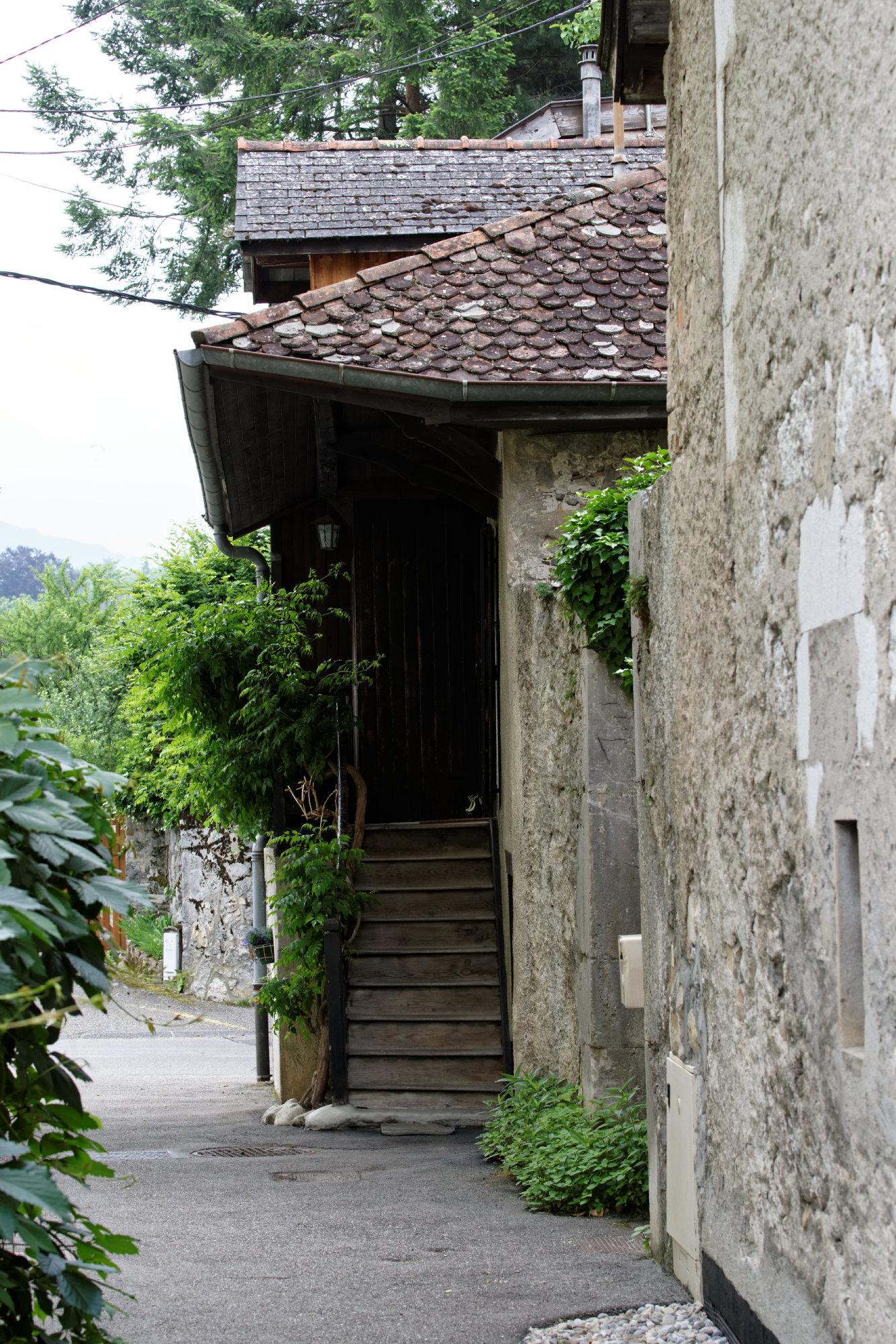 150610-Menthon Saint Bernard (Haute Savoie) (11)