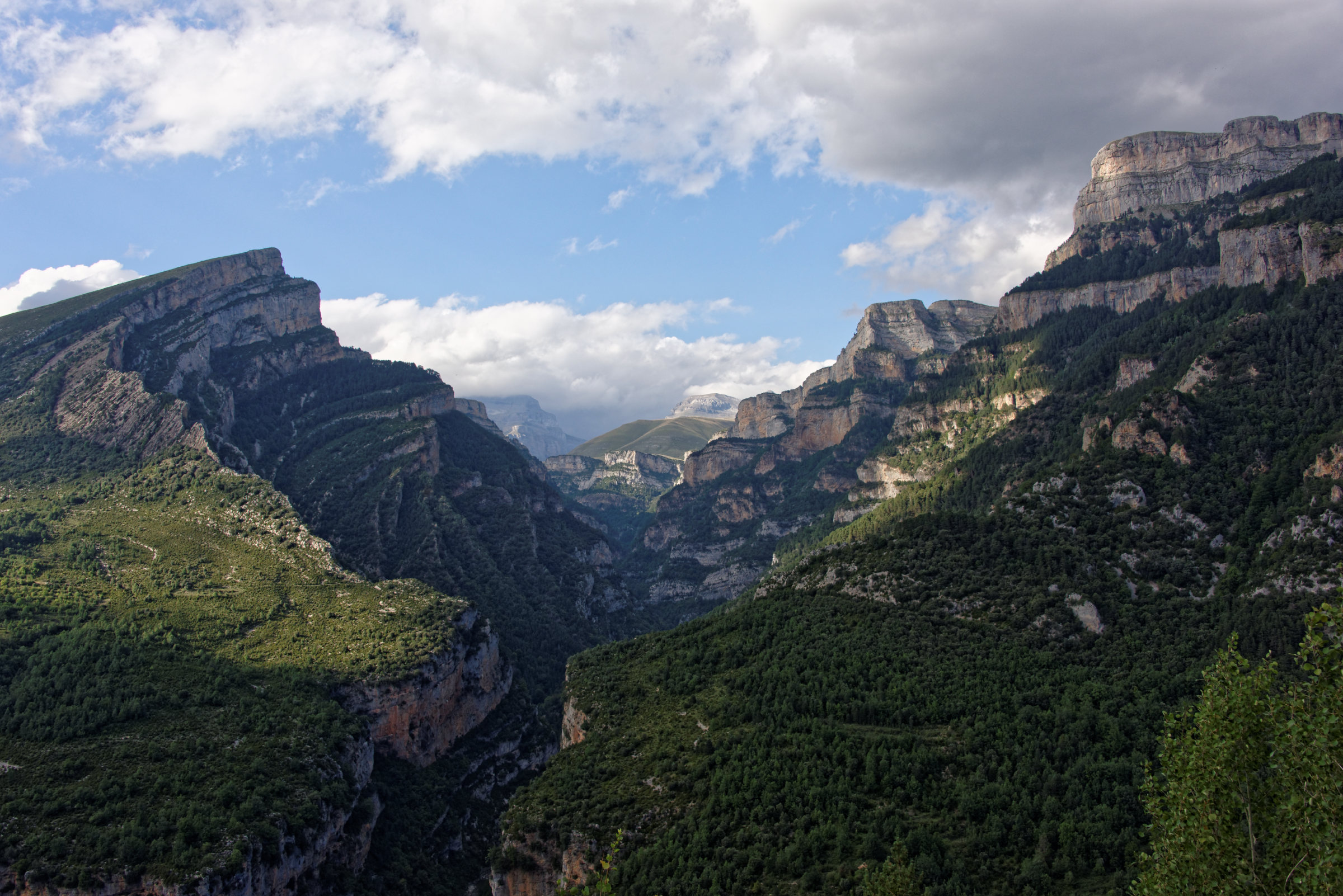150823-Canyon d'Anisclo (Sobrarbe) (44)