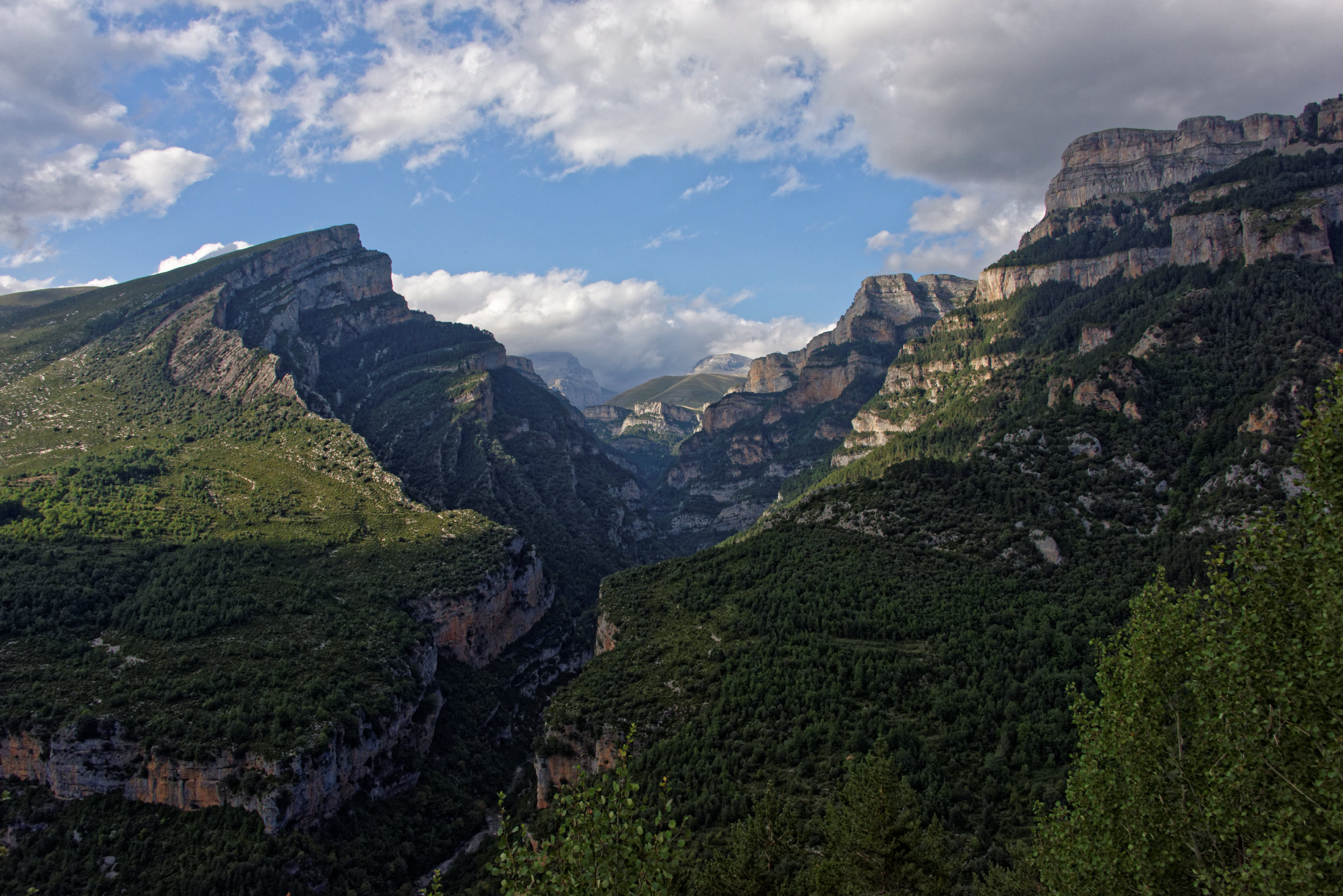 150823-Canyon d'Anisclo (Sobrarbe) (45)