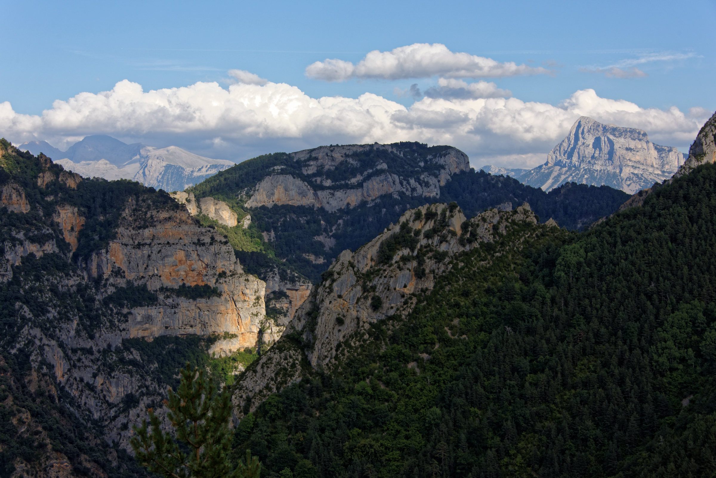 150823-Canyon d'Anisclo (Sobrarbe) (47)