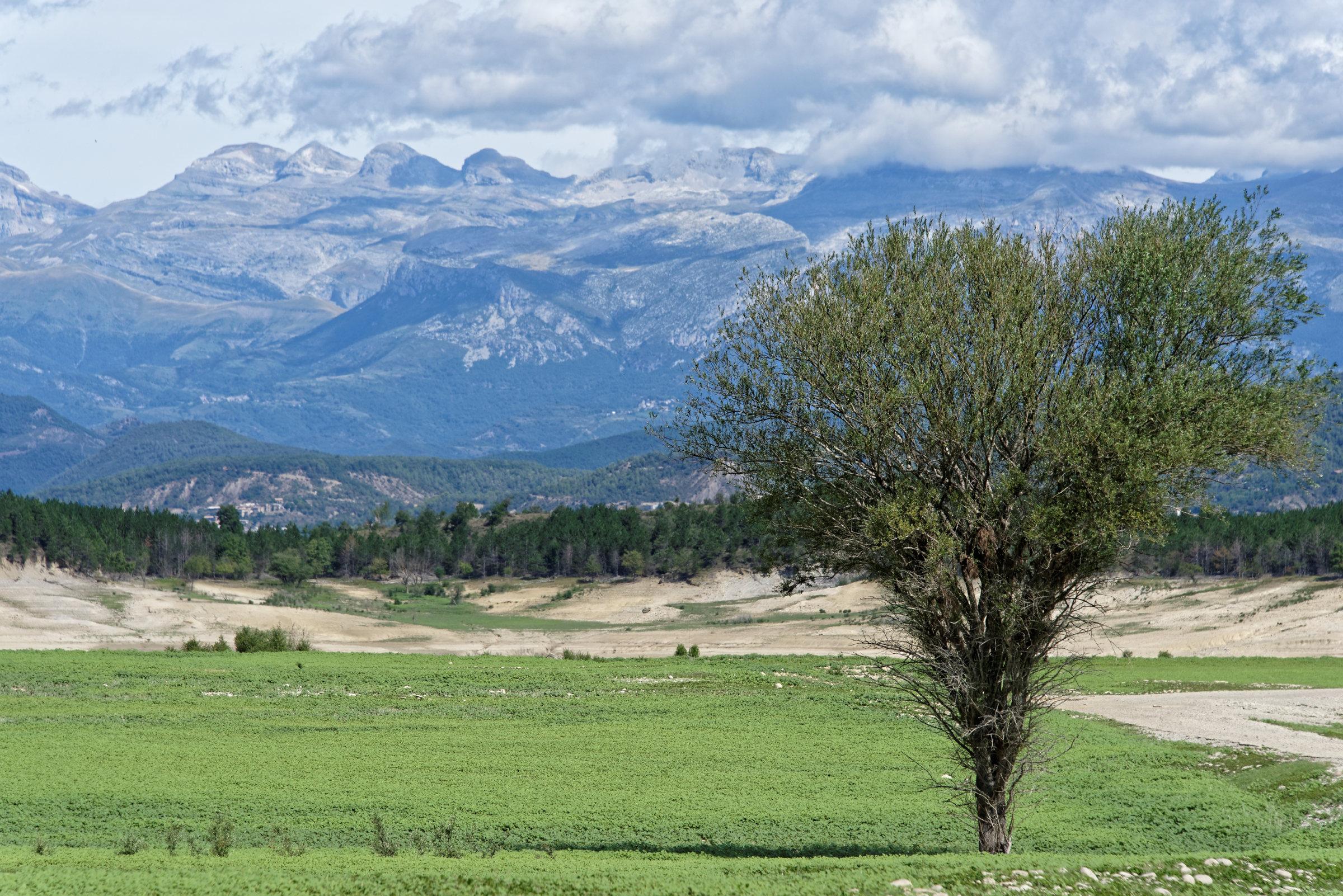 150824-Lac Mediano (Sobrarbe) (32)