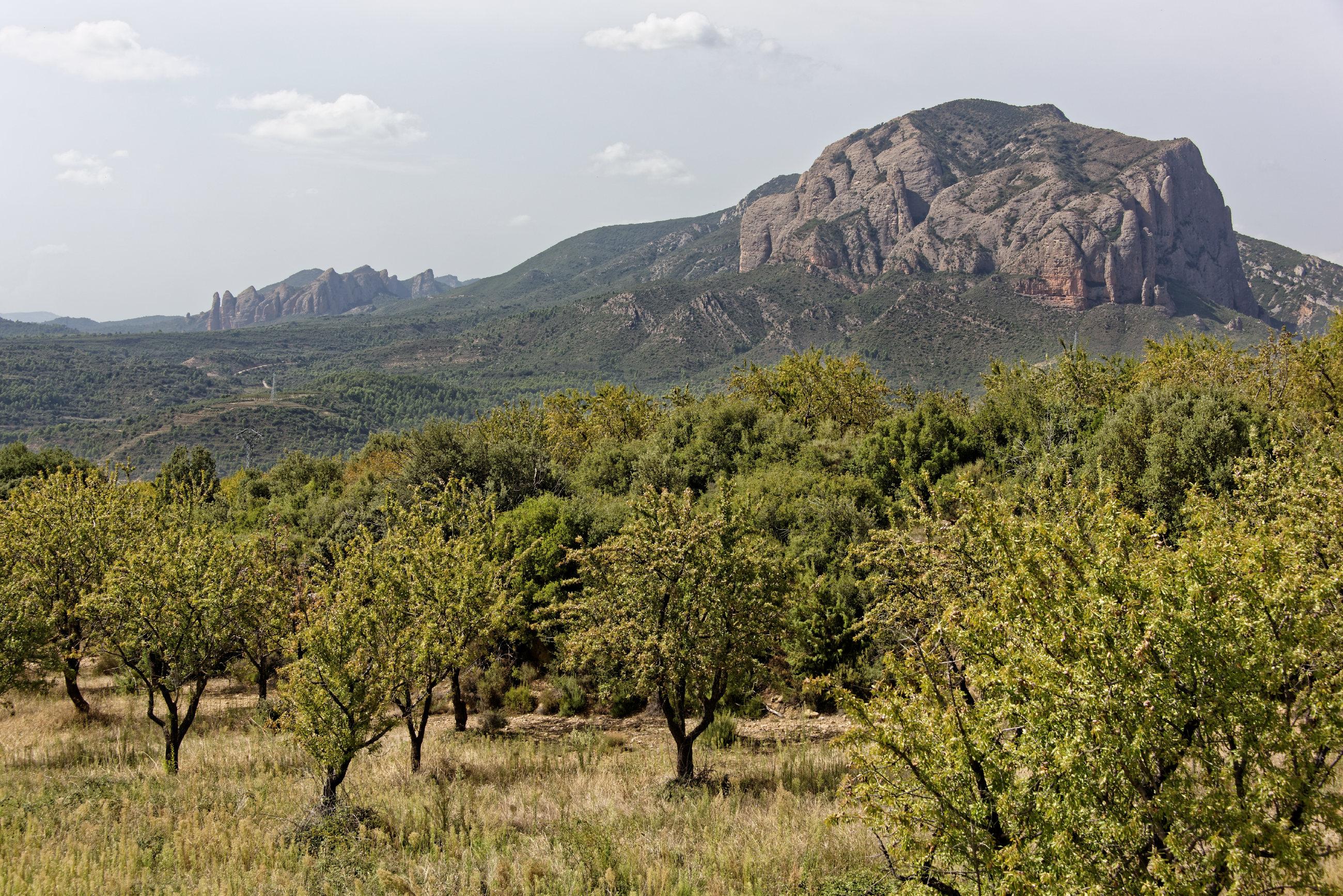 (7268) Mallos de Riglos (Aragon)