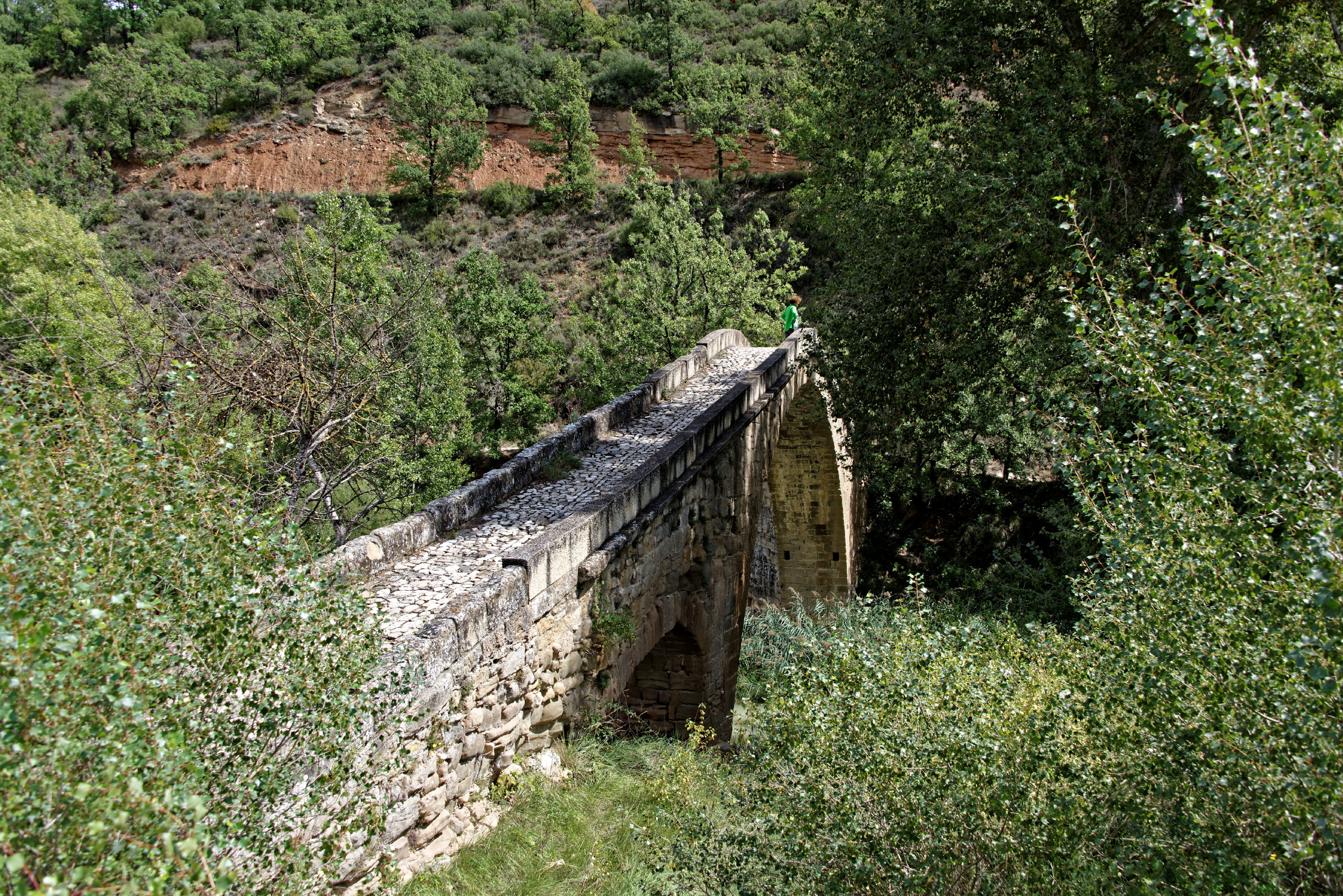 (7630) Pont de Campanachal (Somontano)