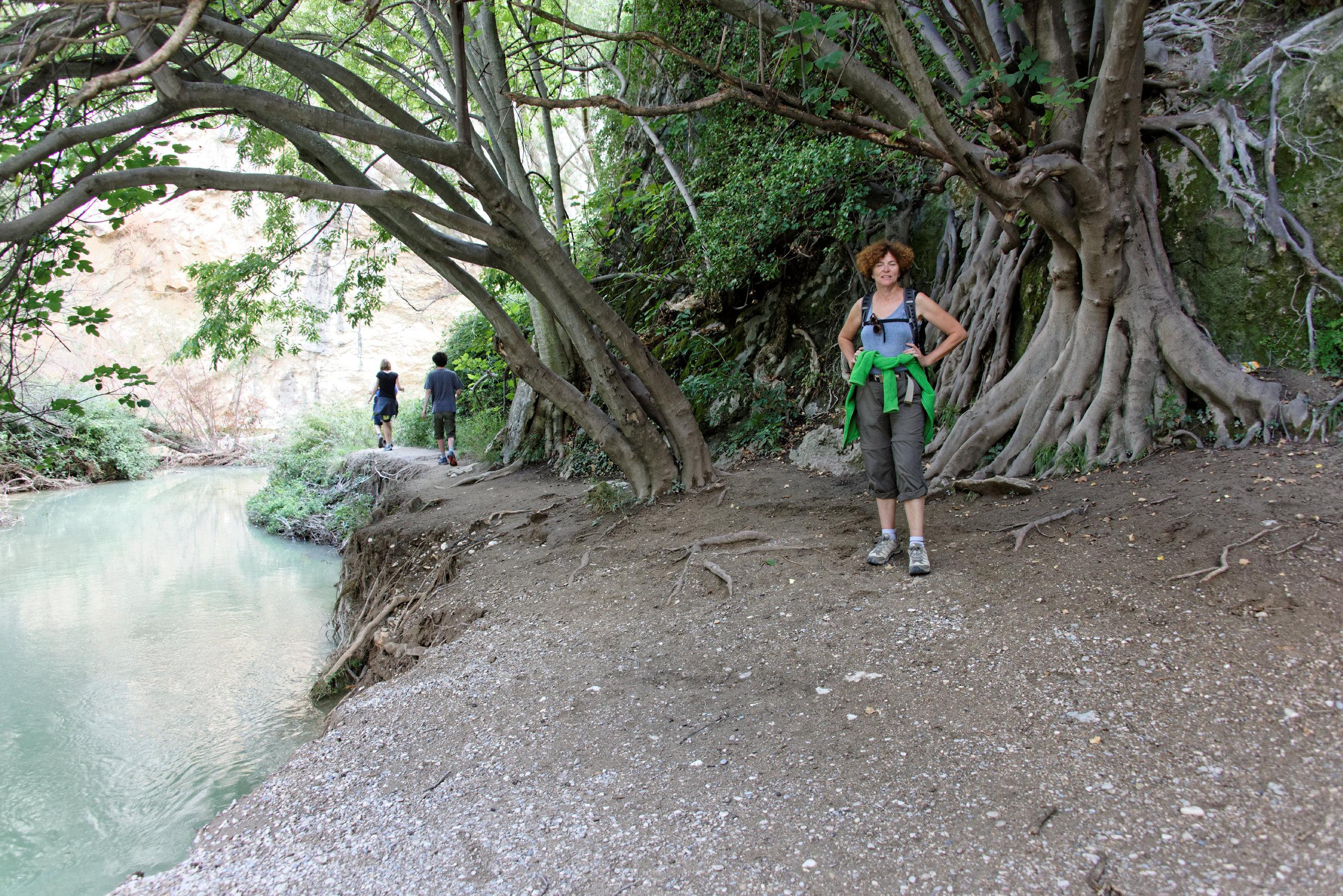 (7690) Alquezar - Sentier des passerelles ( Somontano)