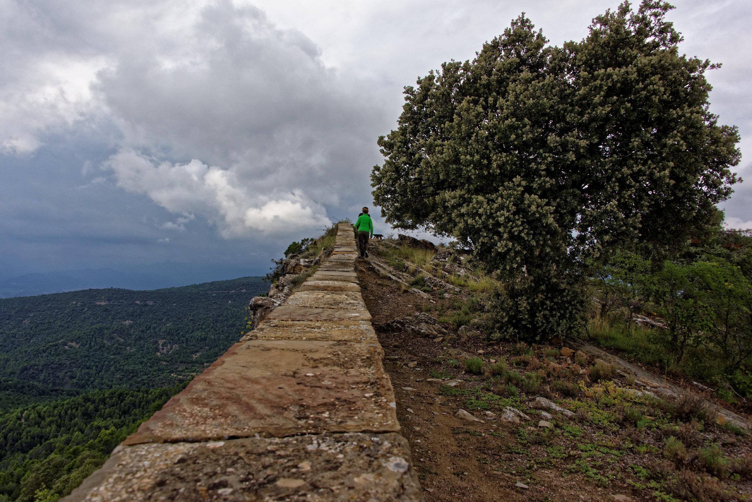 (7792) Muro de Roda (Sobrarbe)