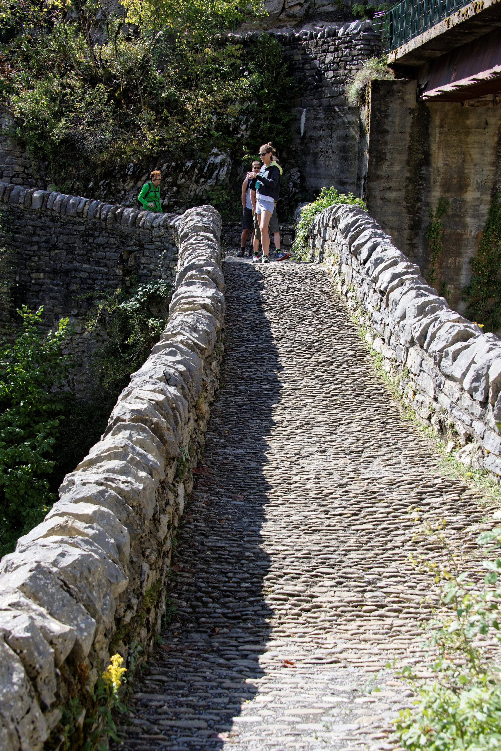 (7815) Puente de San Urbez (Sobrarbe-Anisclo)